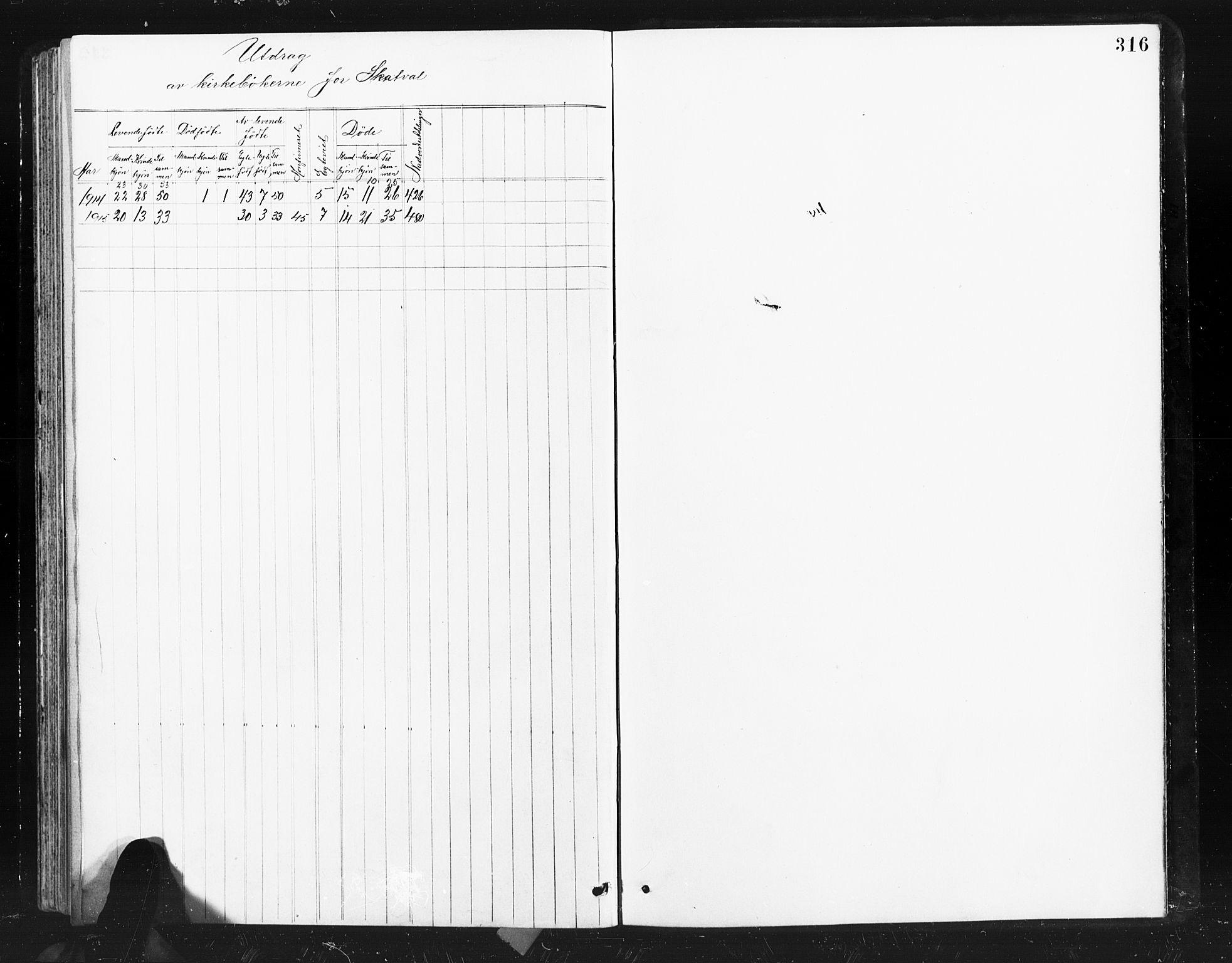 SAT, Ministerialprotokoller, klokkerbøker og fødselsregistre - Nord-Trøndelag, 712/L0103: Klokkerbok nr. 712C01, 1878-1917, s. 316