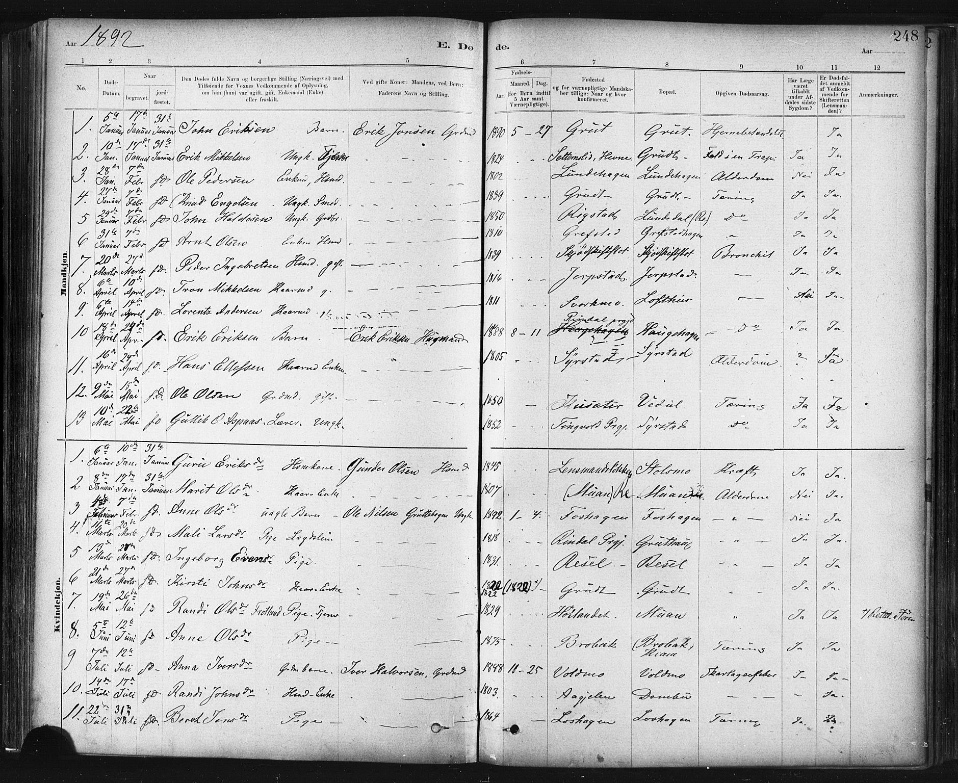 SAT, Ministerialprotokoller, klokkerbøker og fødselsregistre - Sør-Trøndelag, 672/L0857: Ministerialbok nr. 672A09, 1882-1893, s. 248