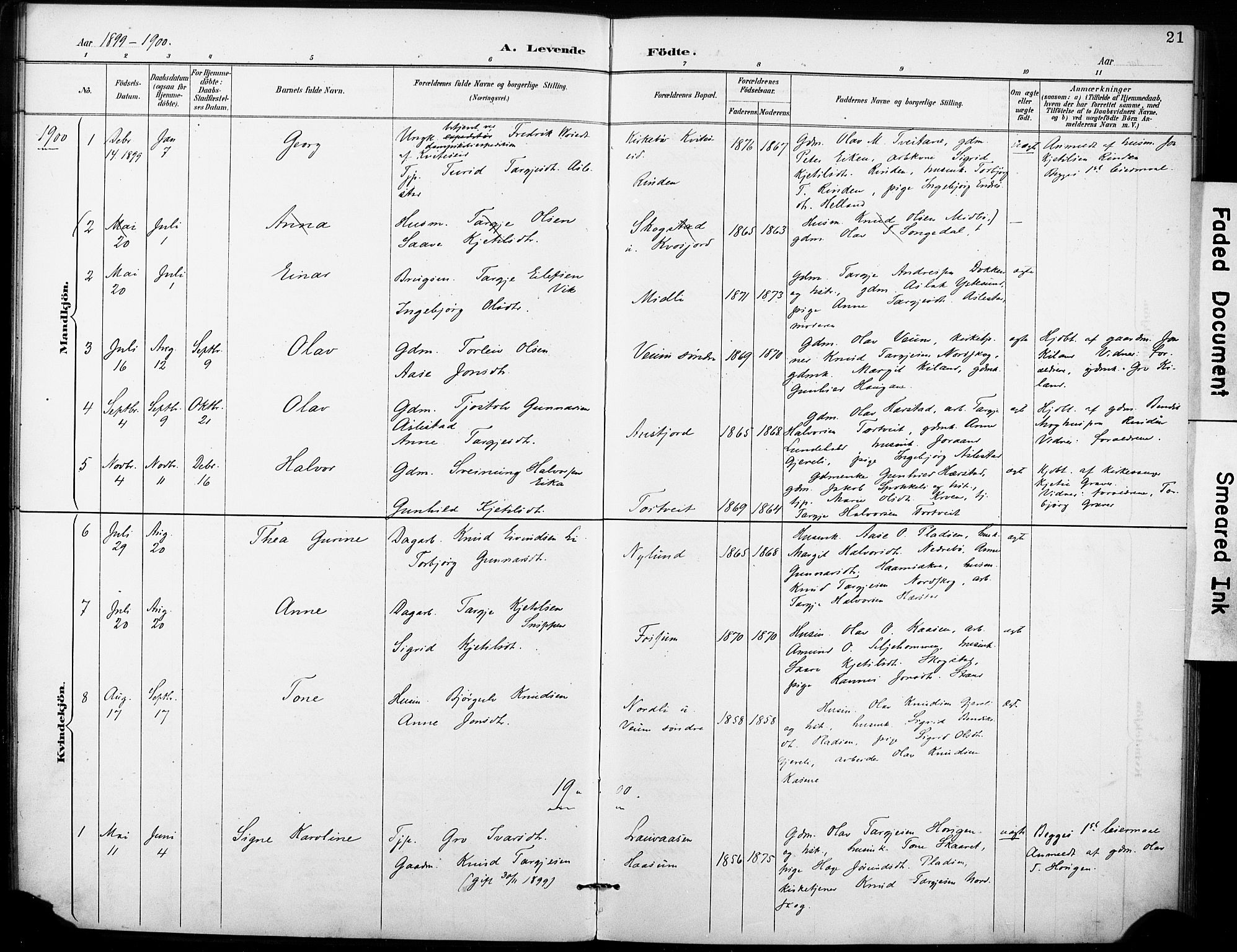 SAKO, Fyresdal kirkebøker, F/Fb/L0003: Ministerialbok nr. II 3, 1887-1903, s. 21