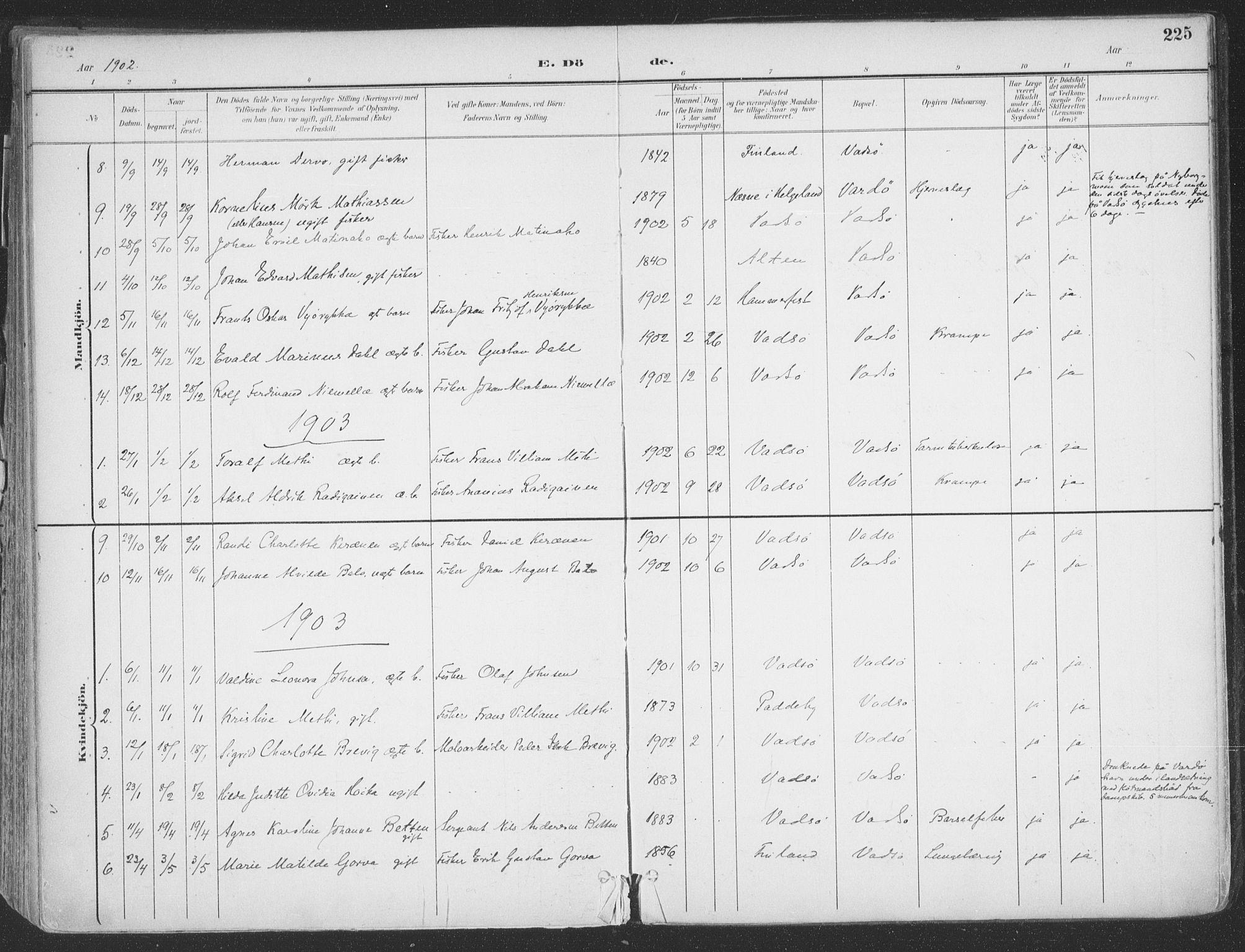 SATØ, Vadsø sokneprestkontor, H/Ha/L0007kirke: Ministerialbok nr. 7, 1896-1916, s. 225