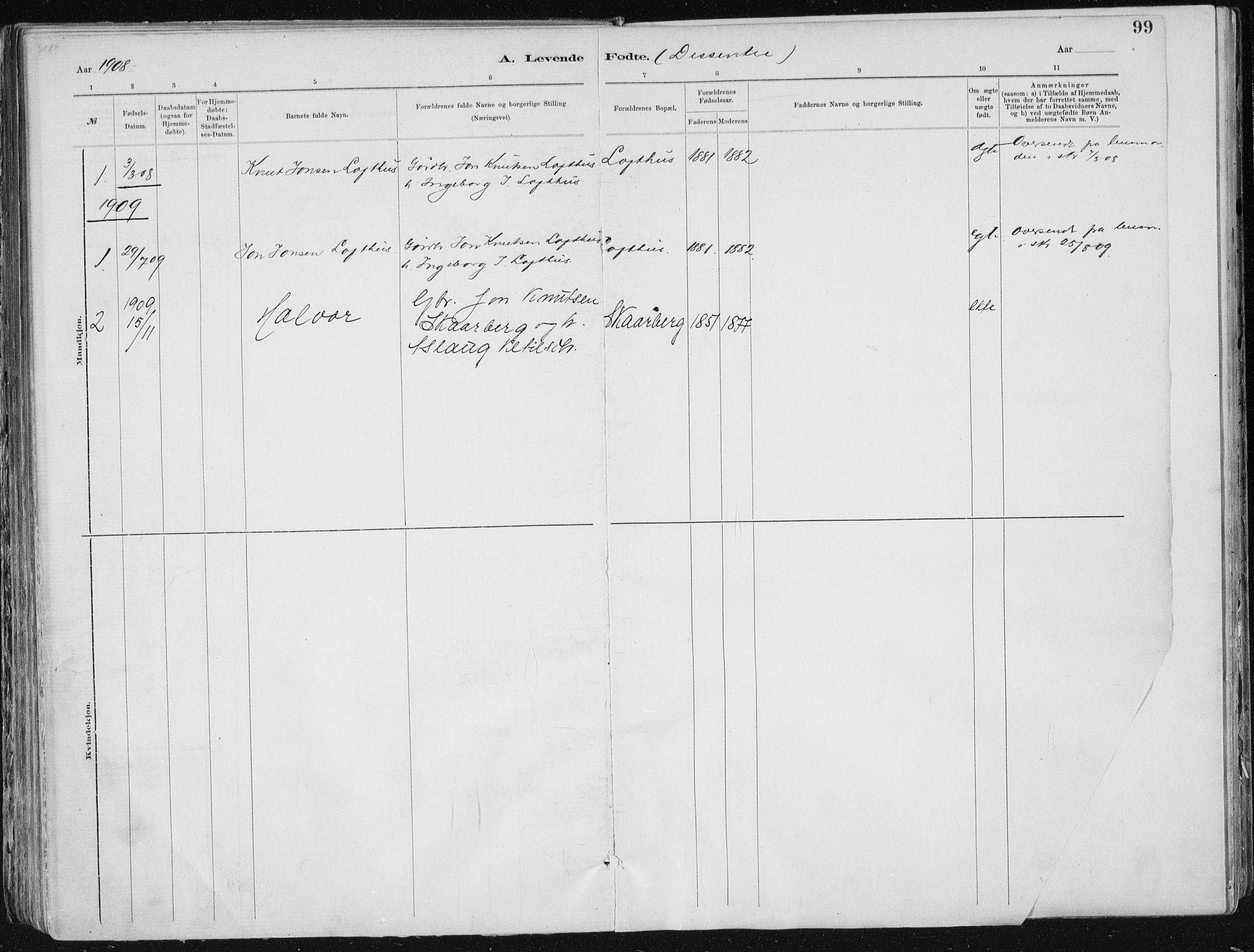 SAKO, Tinn kirkebøker, F/Fa/L0007: Ministerialbok nr. I 7, 1878-1922, s. 99