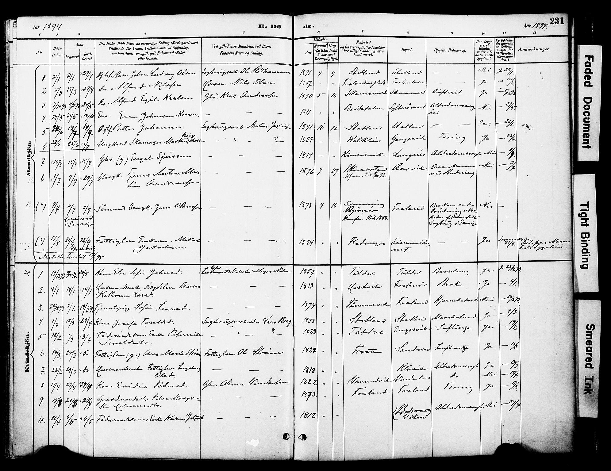 SAT, Ministerialprotokoller, klokkerbøker og fødselsregistre - Nord-Trøndelag, 774/L0628: Ministerialbok nr. 774A02, 1887-1903, s. 231