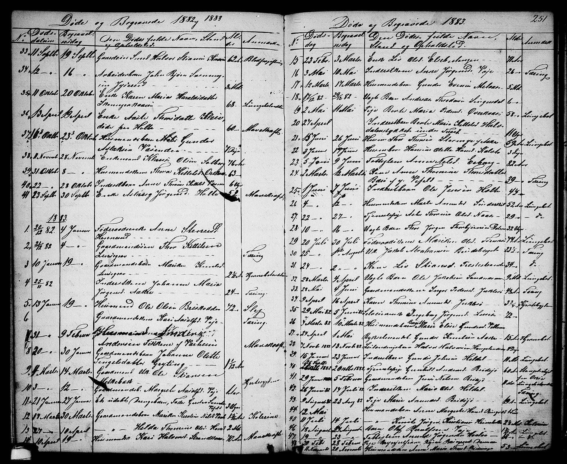 SAKO, Drangedal kirkebøker, G/Ga/L0002: Klokkerbok nr. I 2, 1856-1887, s. 251
