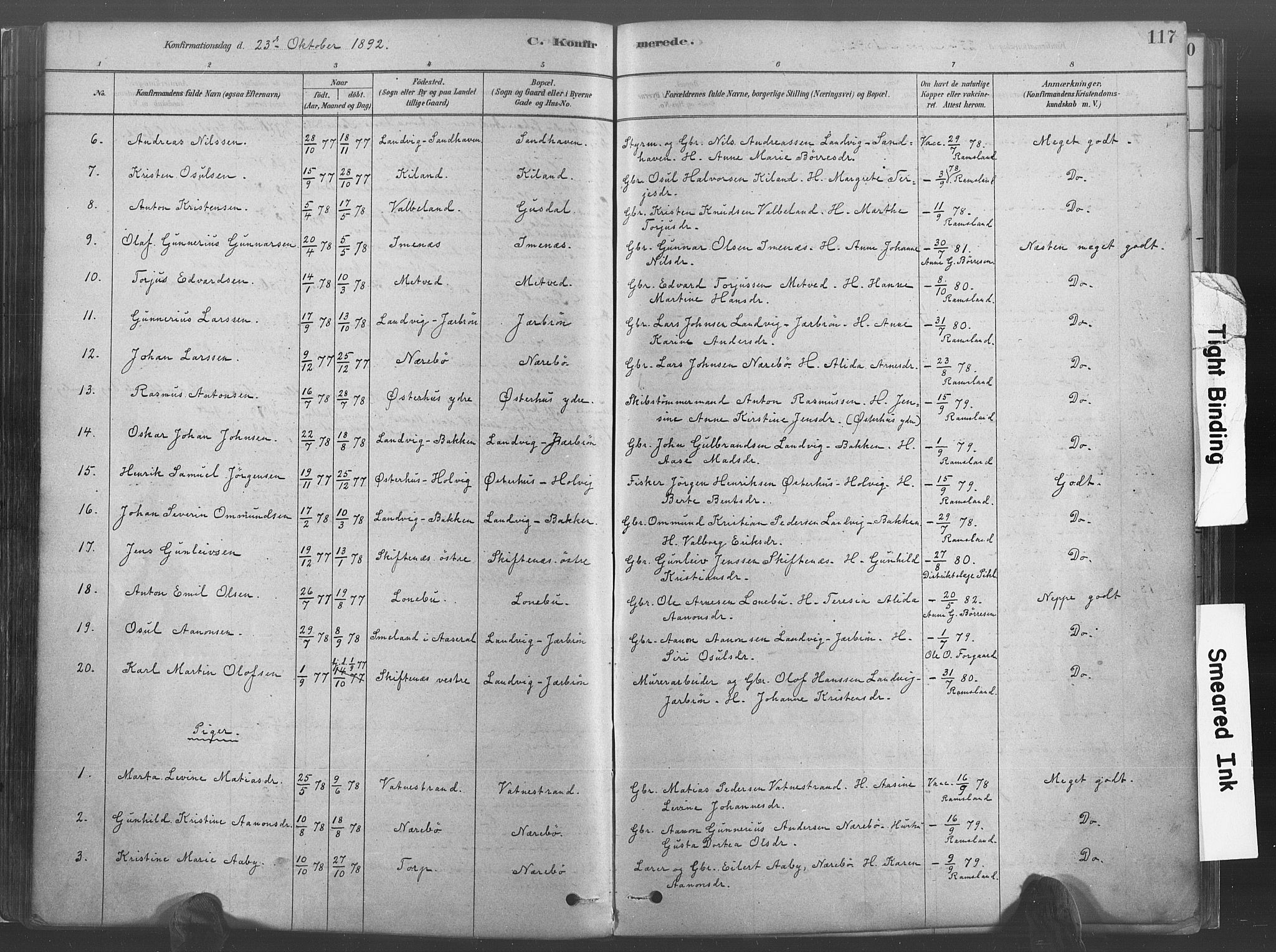 SAK, Hommedal sokneprestkontor, F/Fa/Fab/L0006: Ministerialbok nr. A 6, 1878-1897, s. 117
