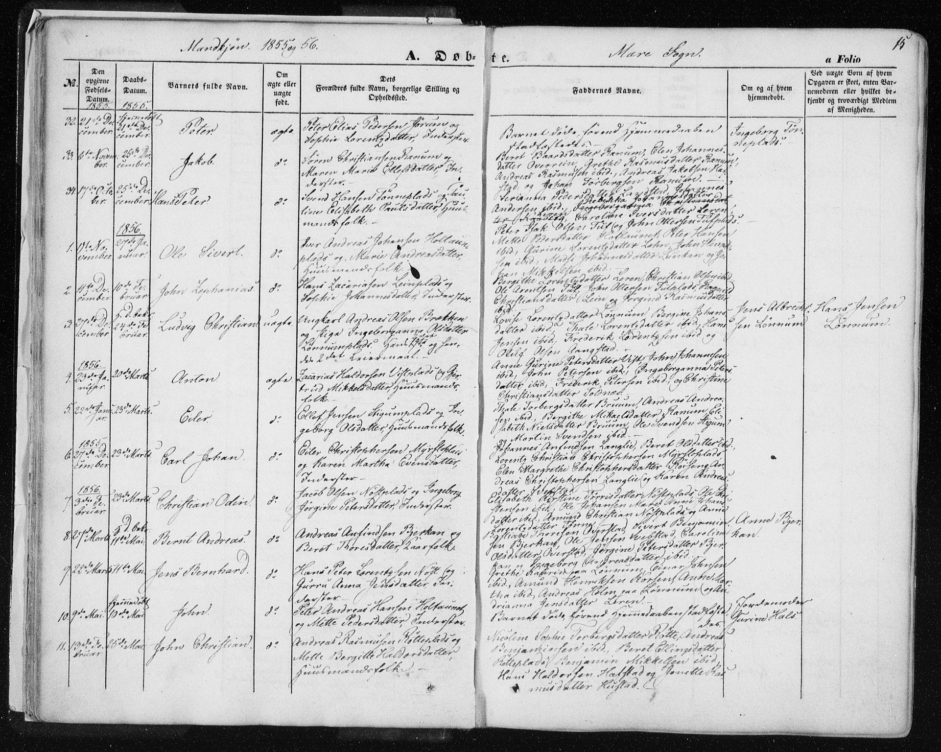 SAT, Ministerialprotokoller, klokkerbøker og fødselsregistre - Nord-Trøndelag, 735/L0342: Ministerialbok nr. 735A07 /1, 1849-1862, s. 15
