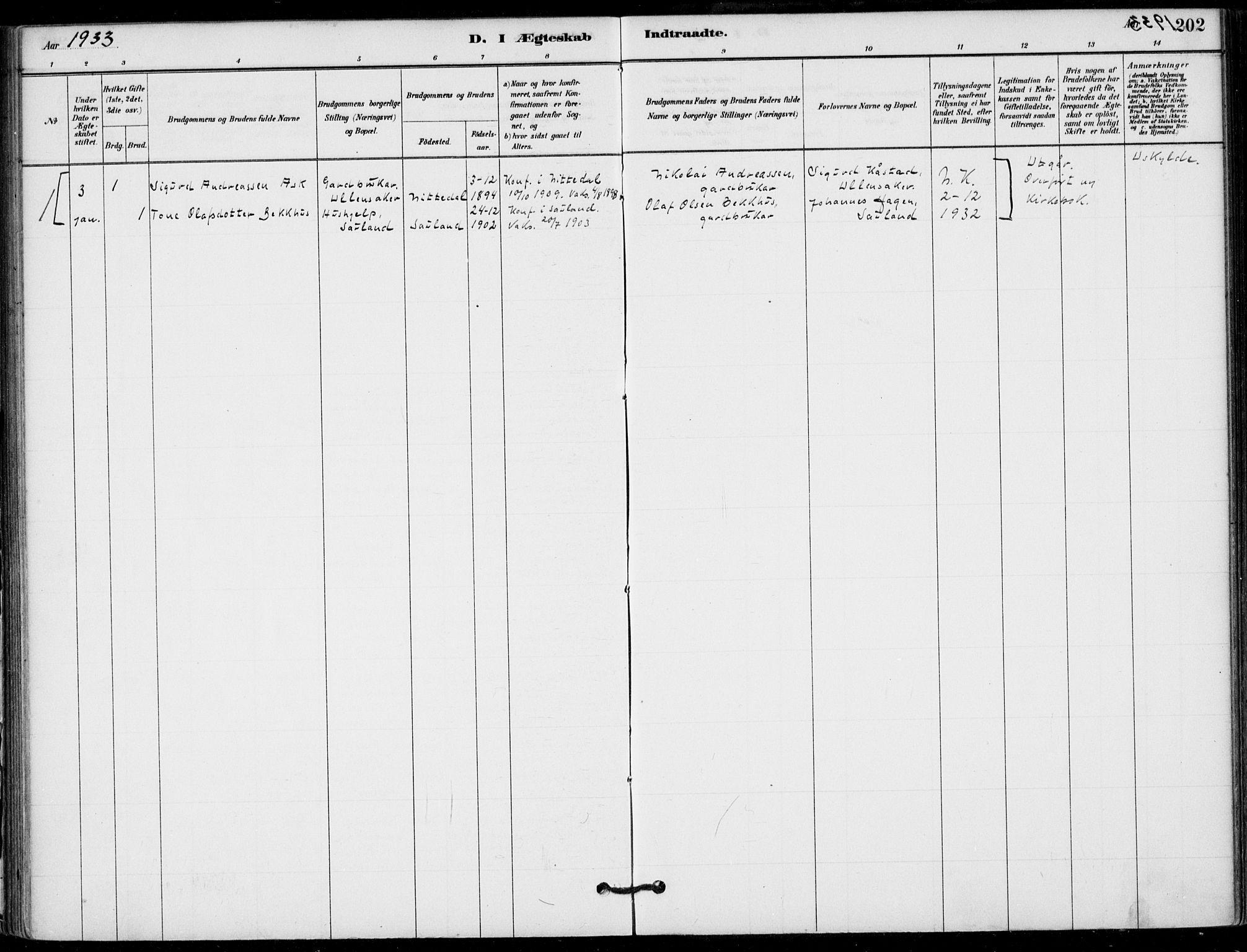 SAKO, Hjartdal kirkebøker, F/Fb/L0002: Ministerialbok nr. II 2, 1880-1932, s. 202