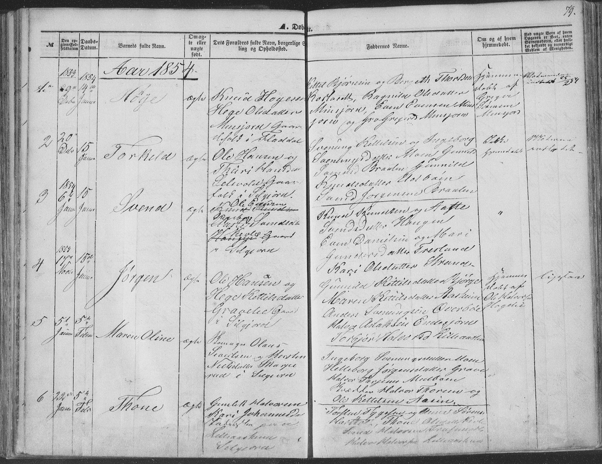 SAKO, Seljord kirkebøker, F/Fa/L012a: Ministerialbok nr. I 12A, 1850-1865, s. 79