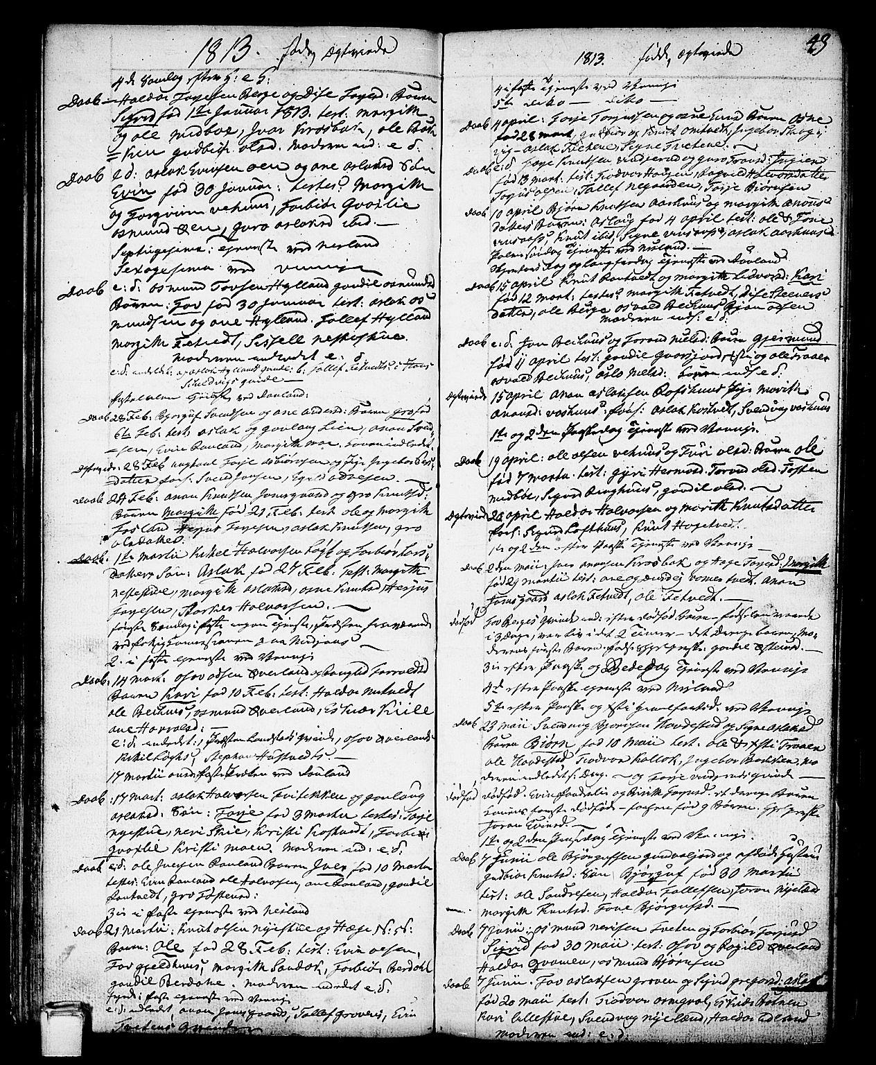 SAKO, Vinje kirkebøker, F/Fa/L0002: Ministerialbok nr. I 2, 1767-1814, s. 43