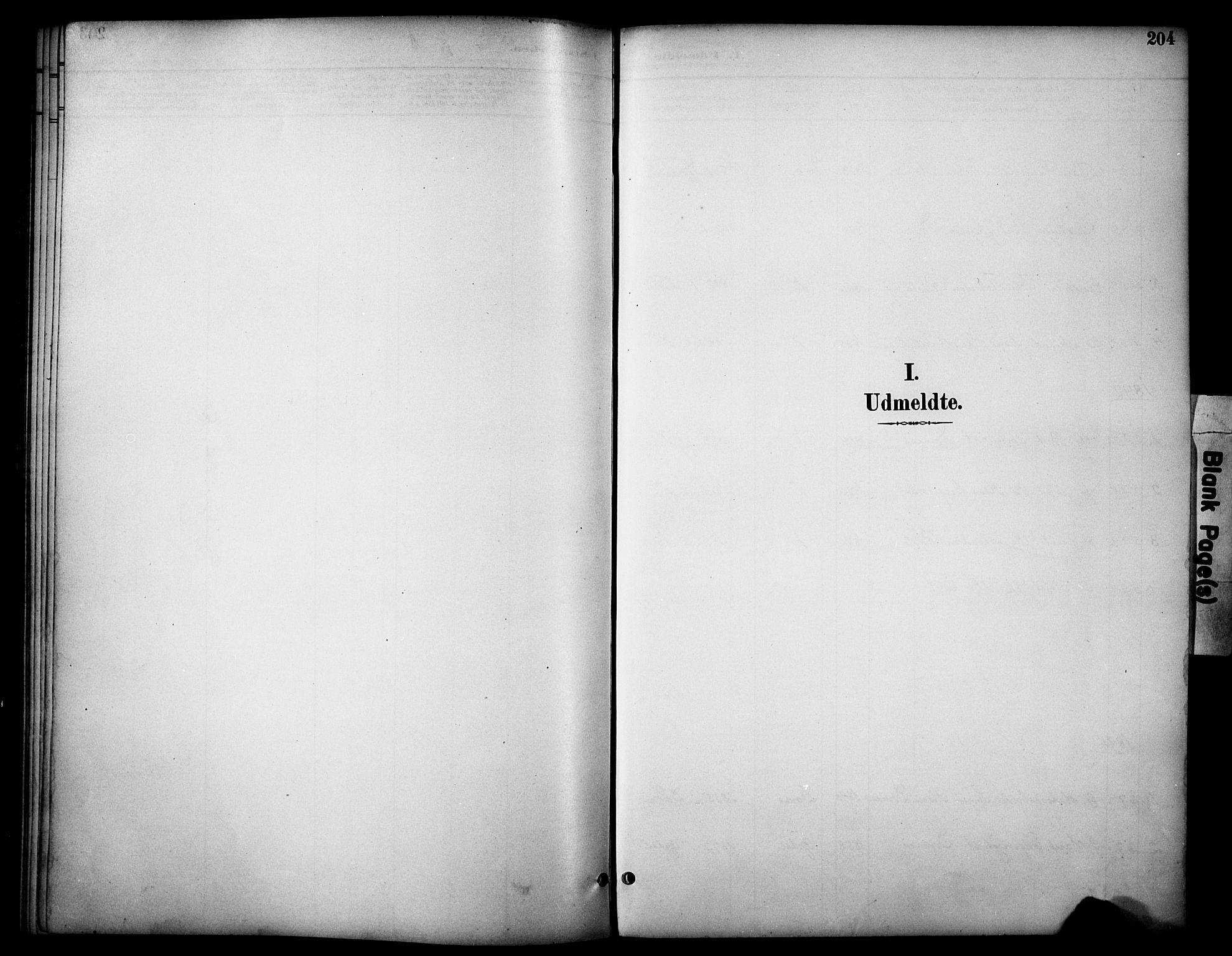 SAH, Dovre prestekontor, Ministerialbok nr. 3, 1891-1901, s. 204
