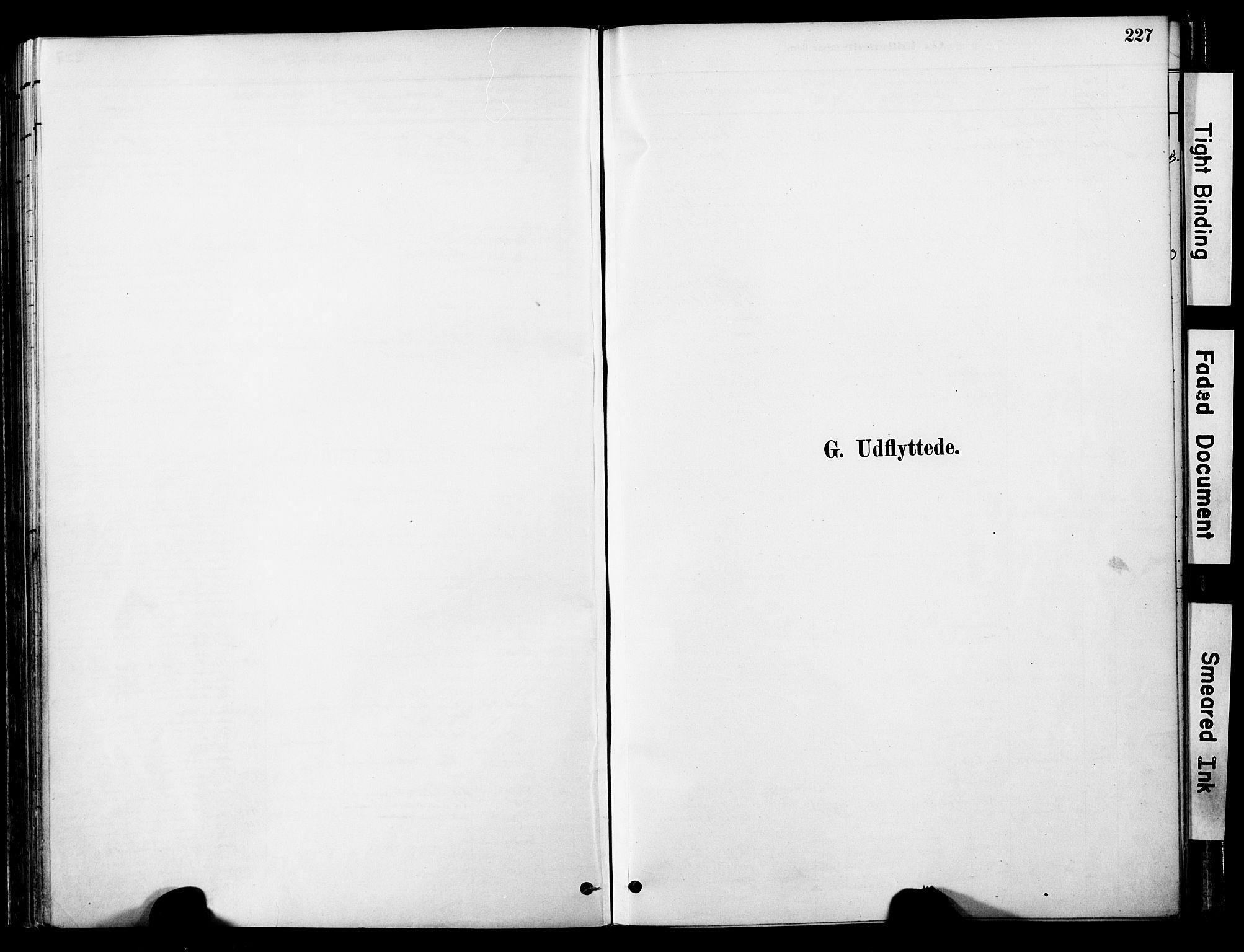 SAT, Ministerialprotokoller, klokkerbøker og fødselsregistre - Nord-Trøndelag, 755/L0494: Ministerialbok nr. 755A03, 1882-1902, s. 227