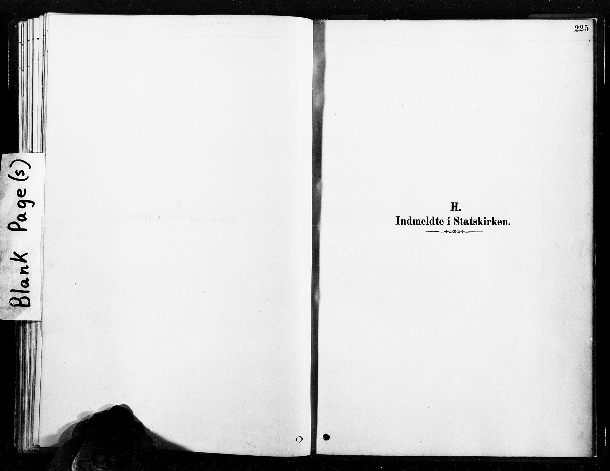 SAT, Ministerialprotokoller, klokkerbøker og fødselsregistre - Nord-Trøndelag, 789/L0705: Ministerialbok nr. 789A01, 1878-1910, s. 225