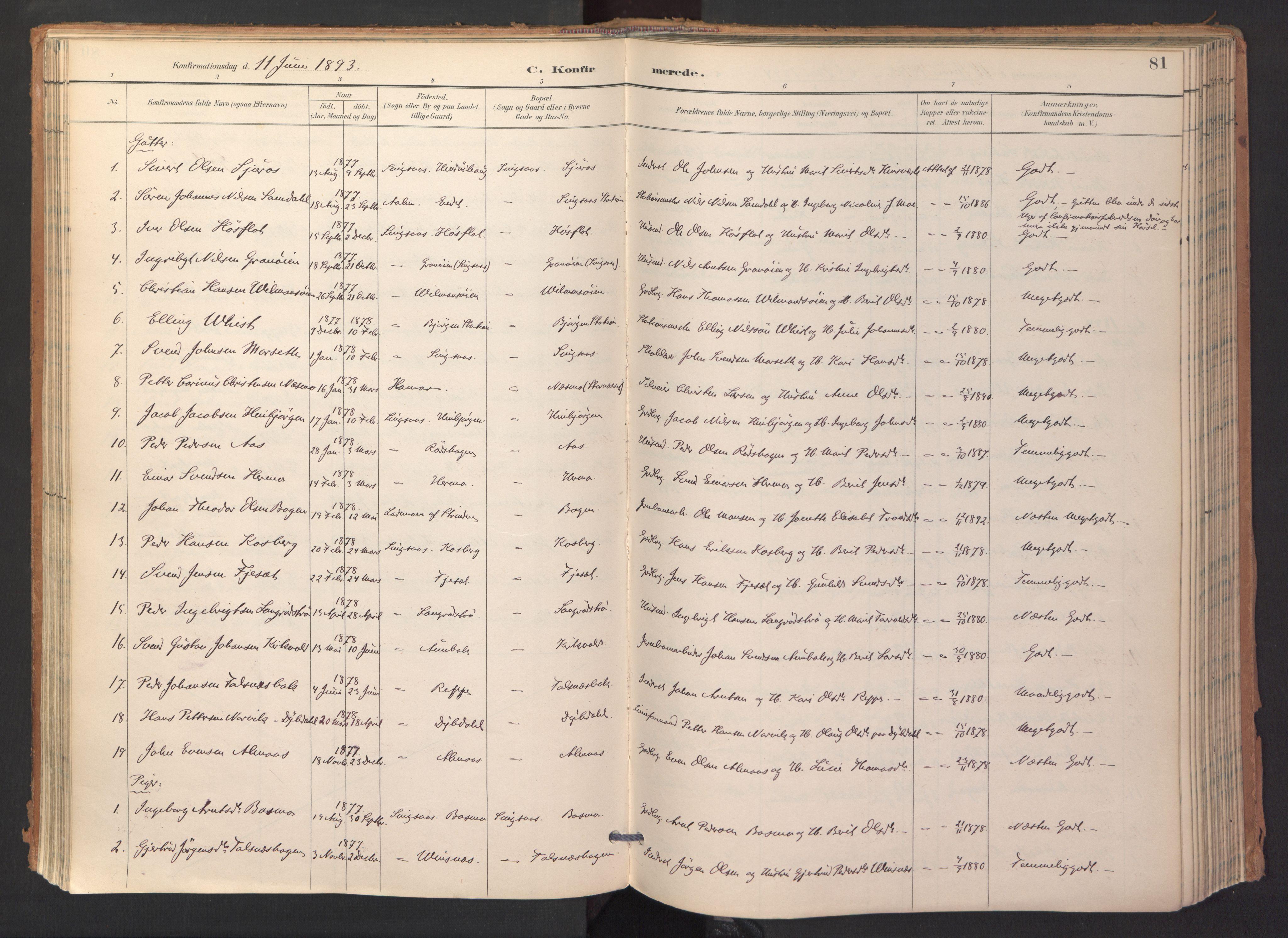 SAT, Ministerialprotokoller, klokkerbøker og fødselsregistre - Sør-Trøndelag, 688/L1025: Ministerialbok nr. 688A02, 1891-1909, s. 81