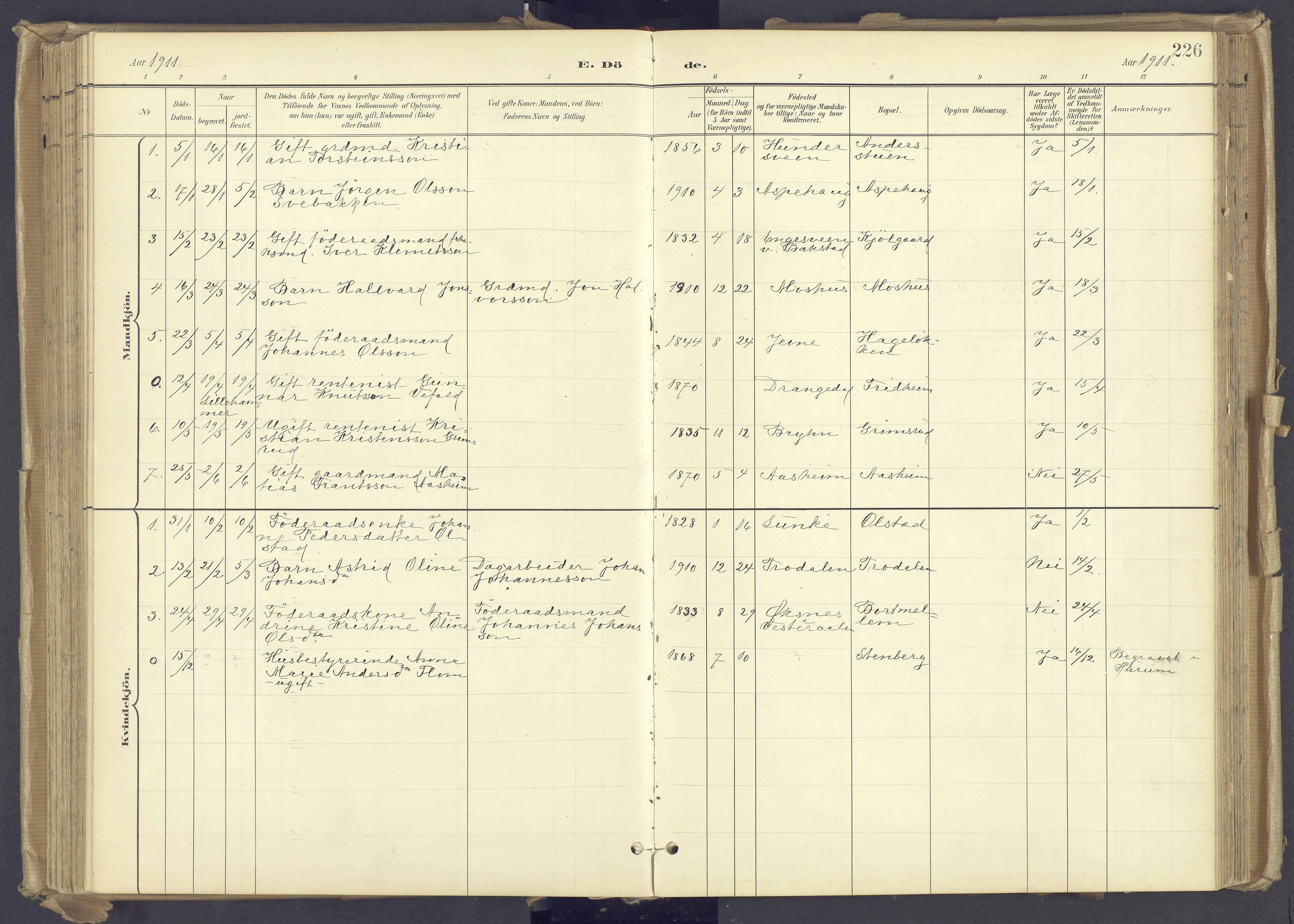 SAH, Øyer prestekontor, Ministerialbok nr. 12, 1897-1920, s. 226