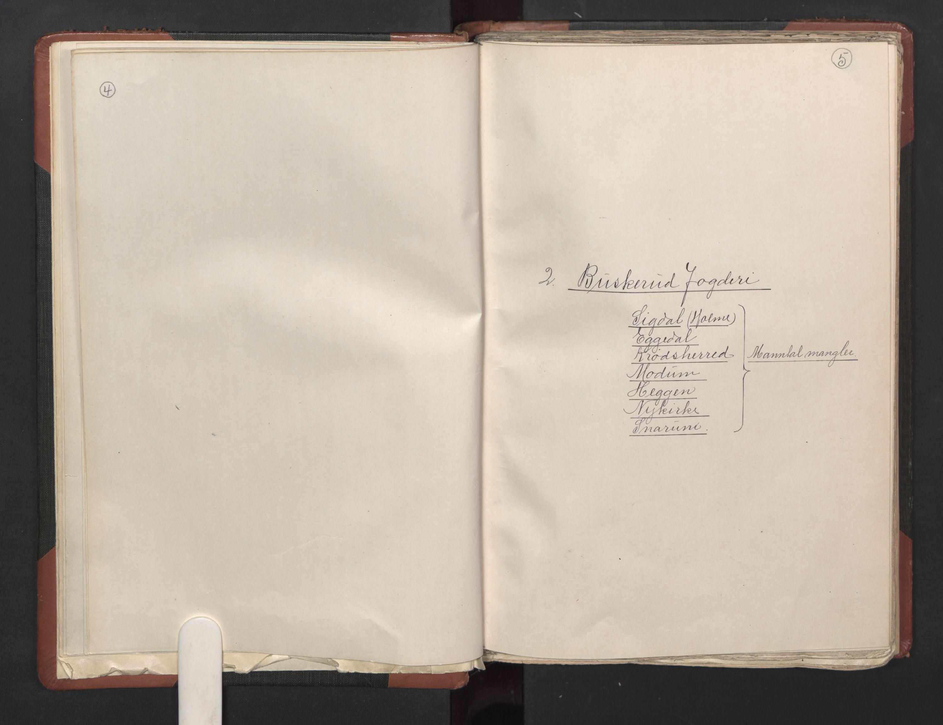 RA, Fogdenes og sorenskrivernes manntall 1664-1666, nr. 5: Fogderier (len og skipreider) i nåværende Buskerud fylke og Vestfold fylke, 1664, s. 4-5