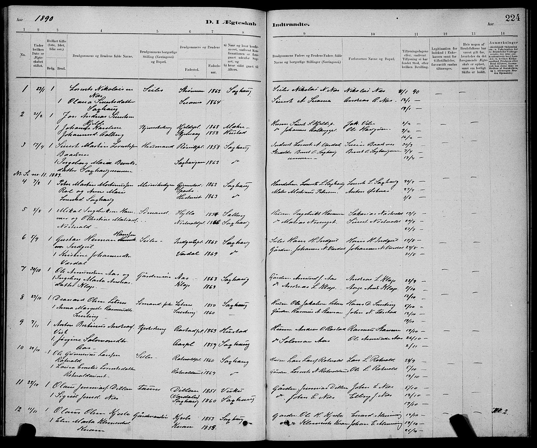SAT, Ministerialprotokoller, klokkerbøker og fødselsregistre - Nord-Trøndelag, 730/L0301: Klokkerbok nr. 730C04, 1880-1897, s. 224