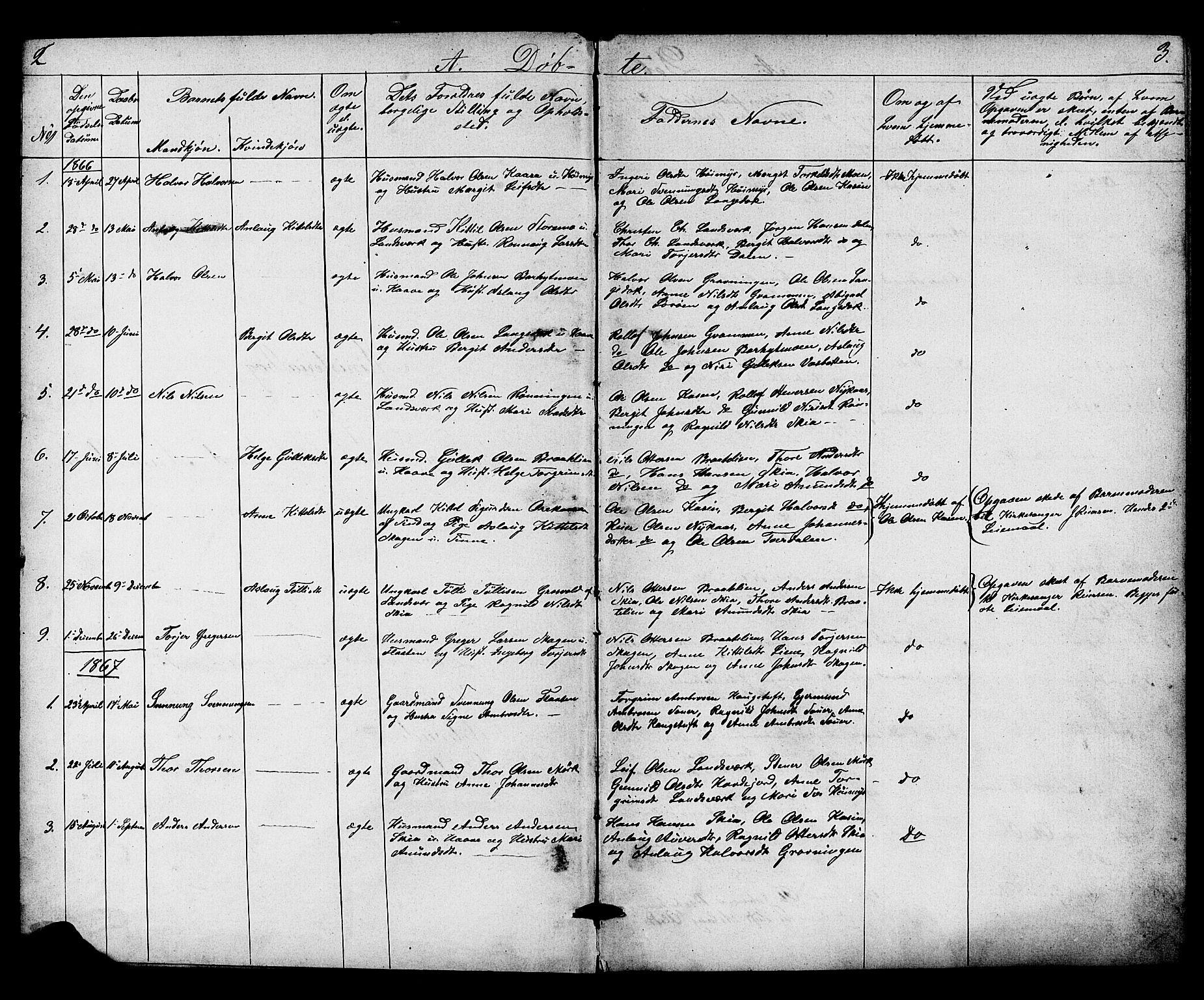 SAKO, Heddal kirkebøker, G/Gb/L0001: Klokkerbok nr. II 1, 1866-1887, s. 2-3