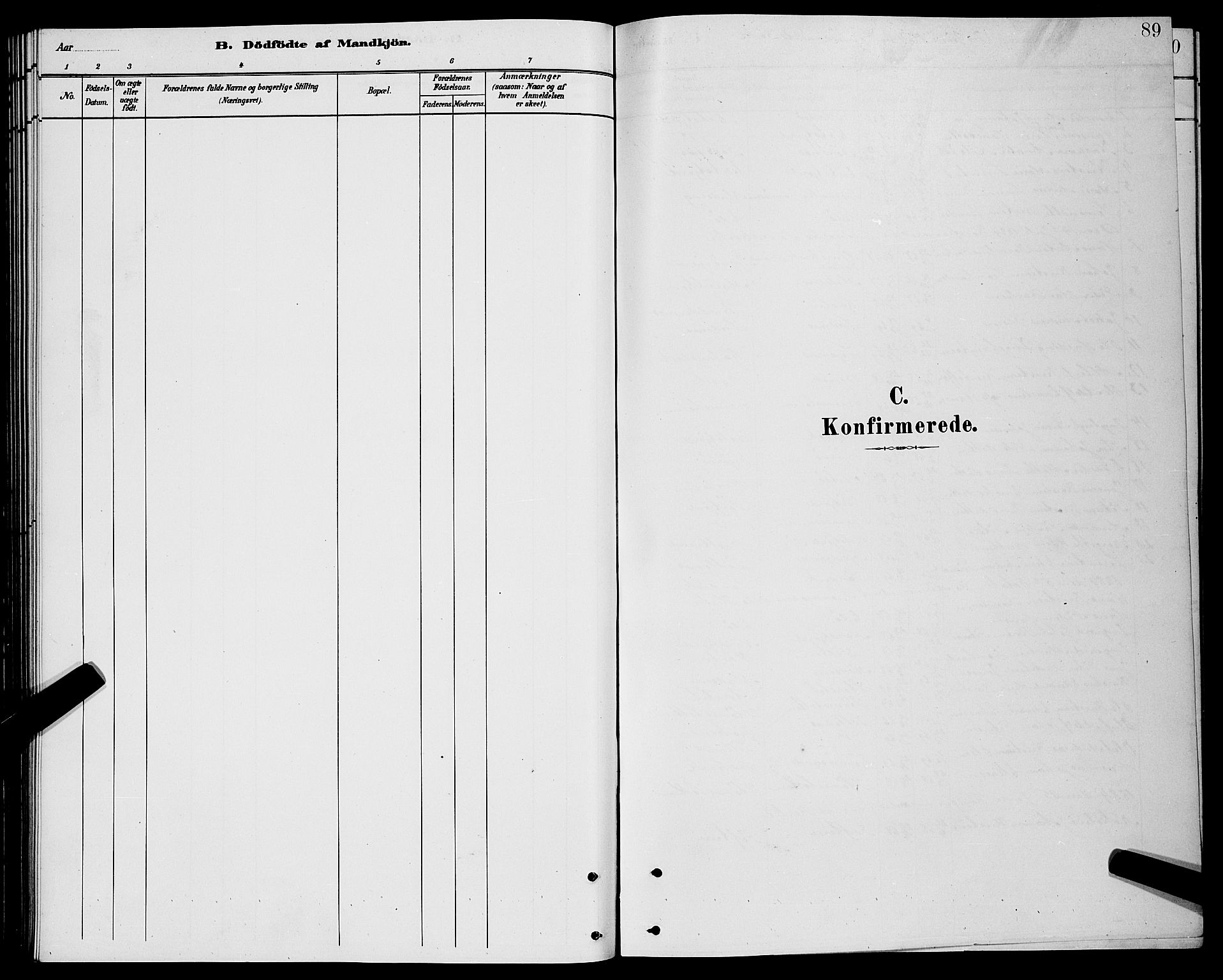SATØ, Lenvik sokneprestembete, H/Ha: Klokkerbok nr. 21, 1884-1900, s. 89