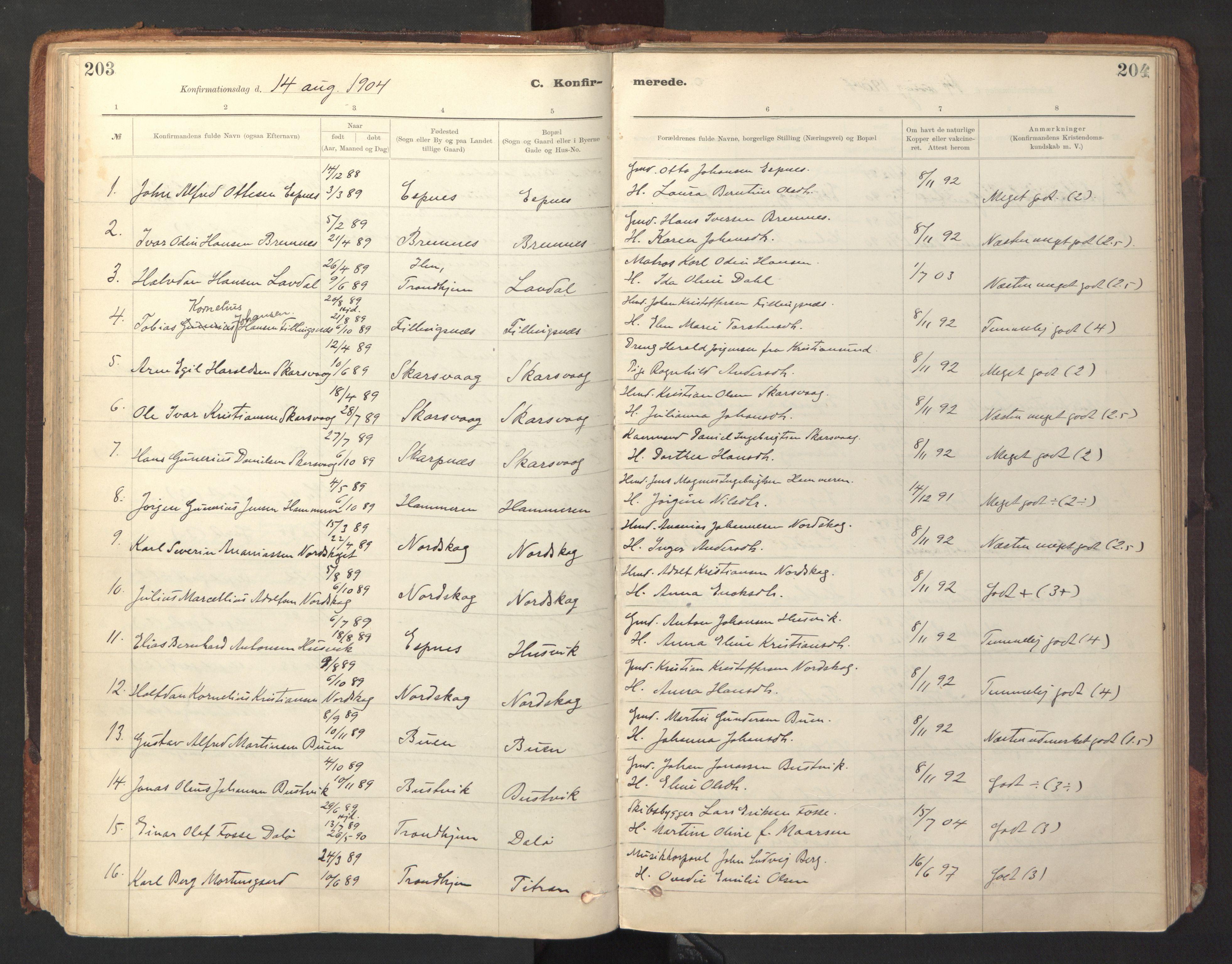 SAT, Ministerialprotokoller, klokkerbøker og fødselsregistre - Sør-Trøndelag, 641/L0596: Ministerialbok nr. 641A02, 1898-1915, s. 203-204