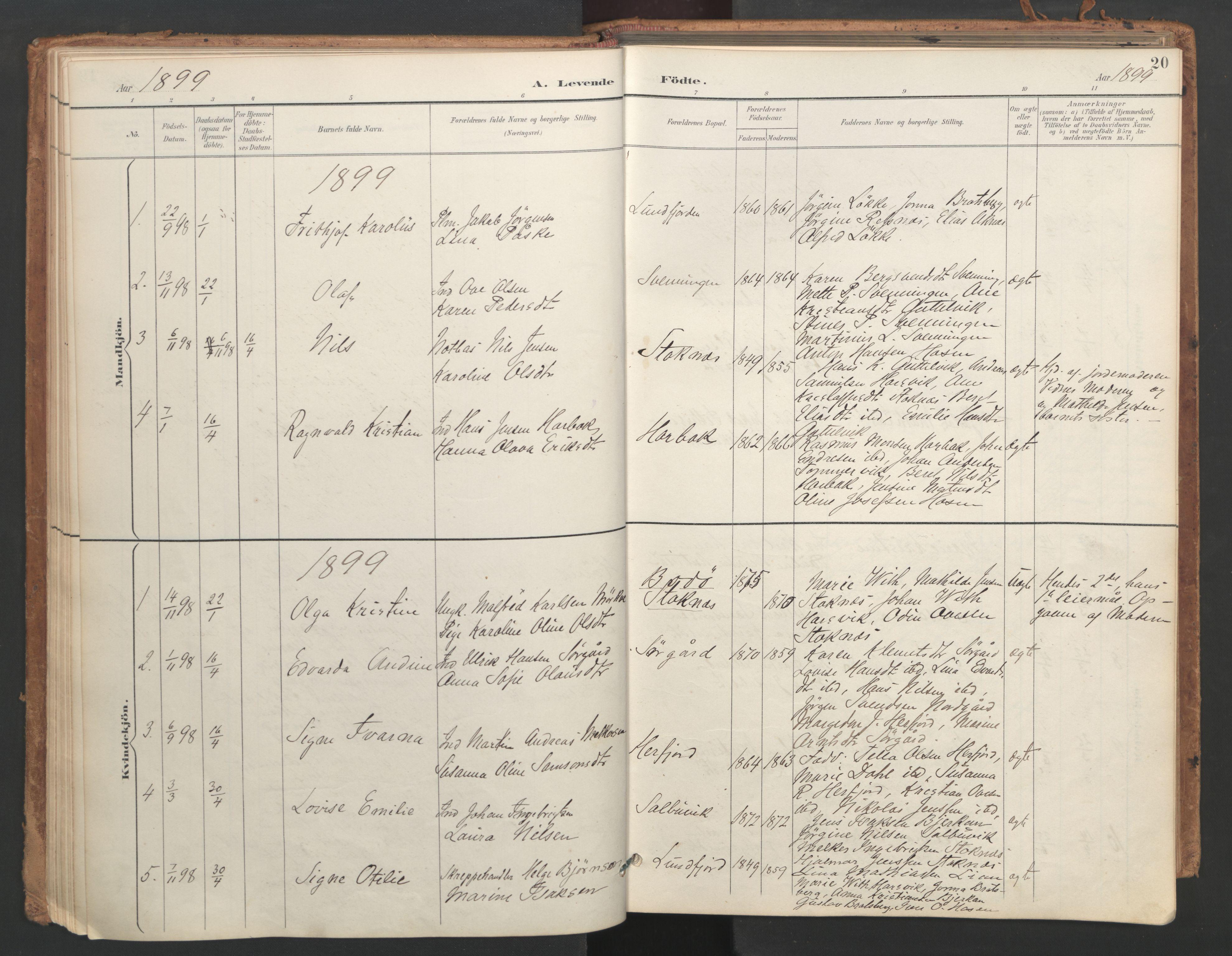 SAT, Ministerialprotokoller, klokkerbøker og fødselsregistre - Sør-Trøndelag, 656/L0693: Ministerialbok nr. 656A02, 1894-1913, s. 20