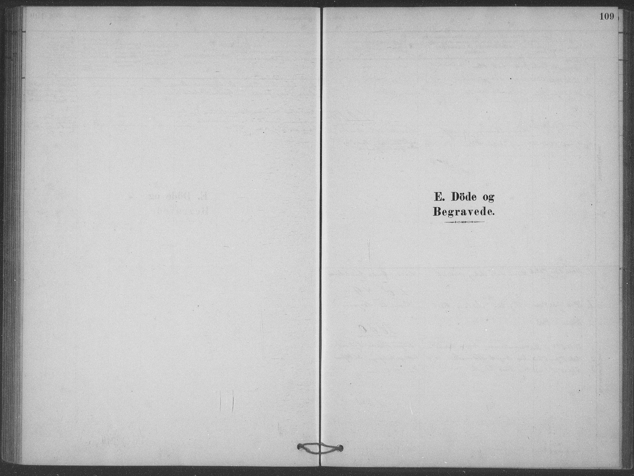 SAKO, Heddal kirkebøker, F/Fb/L0002: Ministerialbok nr. II 2, 1878-1913, s. 109