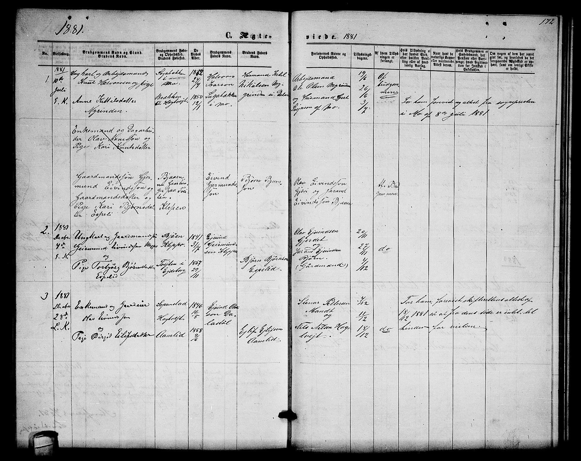 SAKO, Lårdal kirkebøker, G/Gb/L0002: Klokkerbok nr. II 2, 1865-1888, s. 172