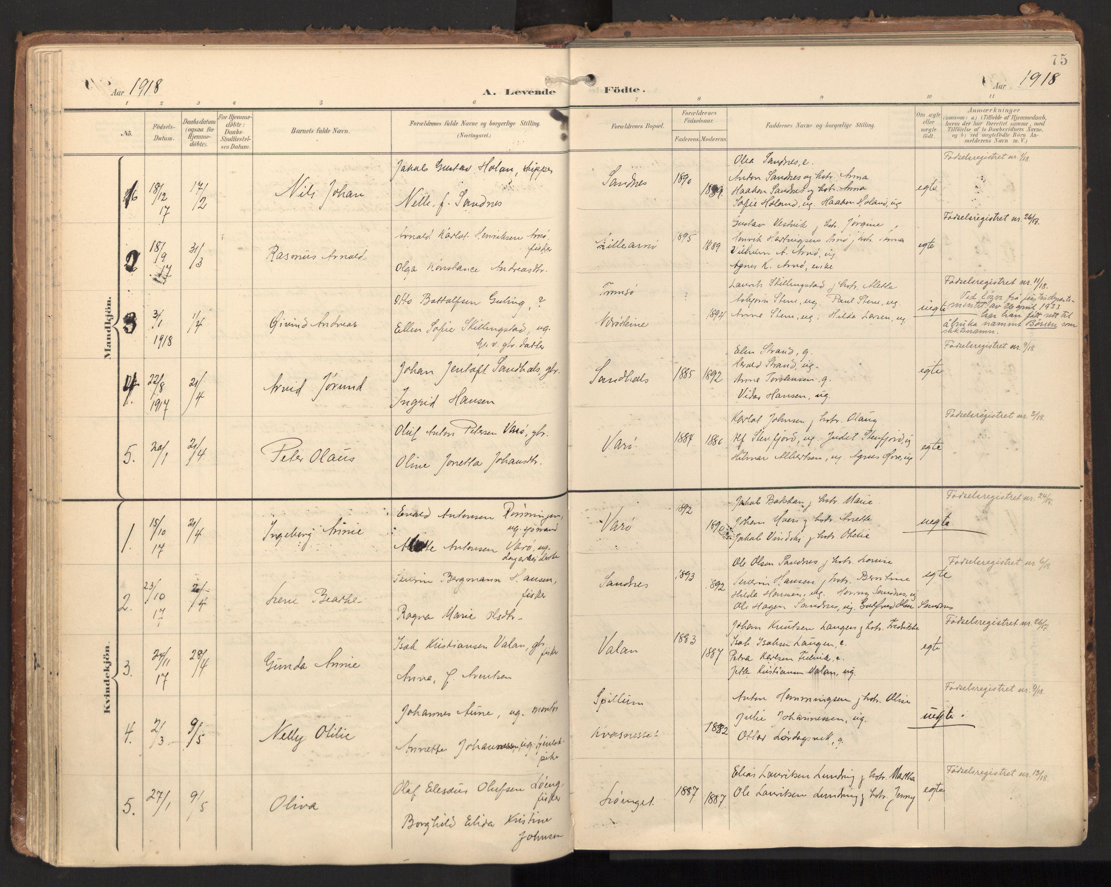SAT, Ministerialprotokoller, klokkerbøker og fødselsregistre - Nord-Trøndelag, 784/L0677: Ministerialbok nr. 784A12, 1900-1920, s. 75