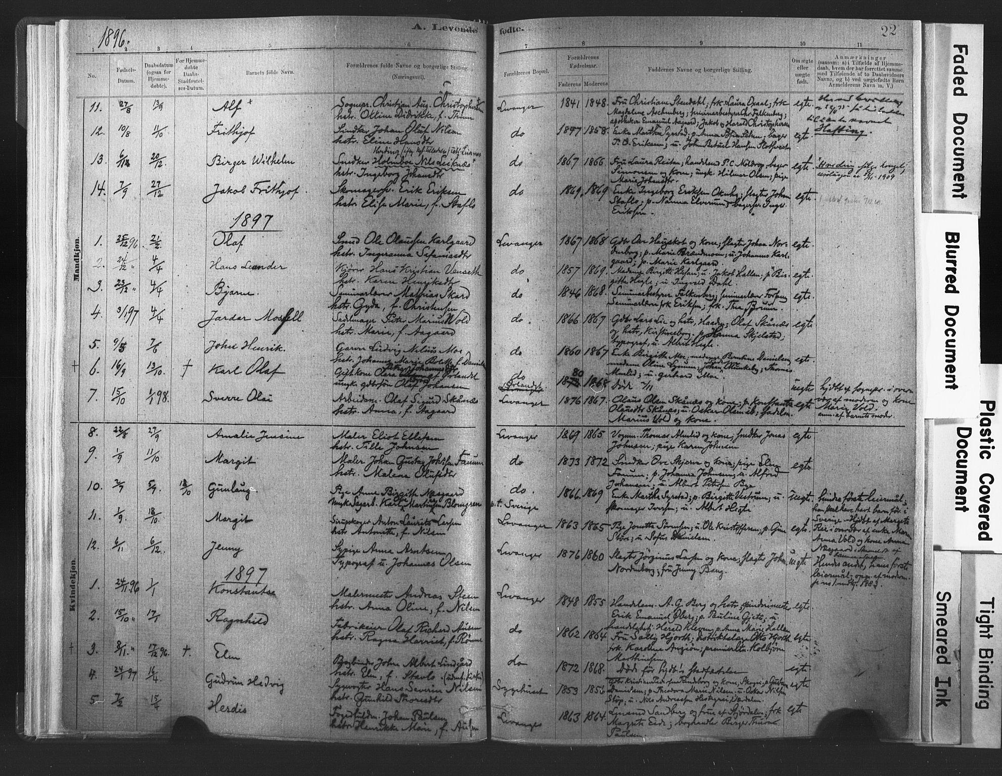 SAT, Ministerialprotokoller, klokkerbøker og fødselsregistre - Nord-Trøndelag, 720/L0189: Ministerialbok nr. 720A05, 1880-1911, s. 22