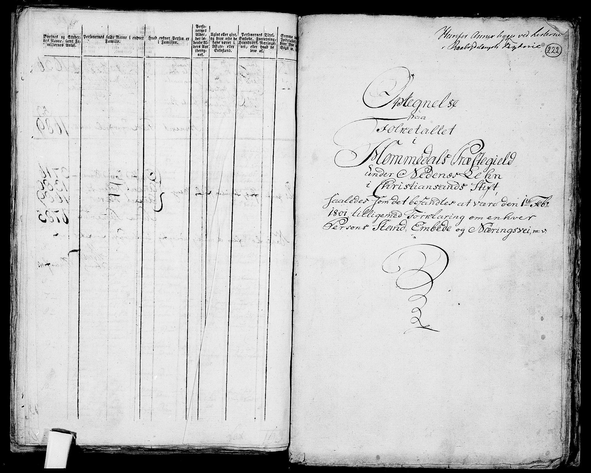 RA, Folketelling 1801 for 0924P Homedal prestegjeld, 1801, s. 221b-222a