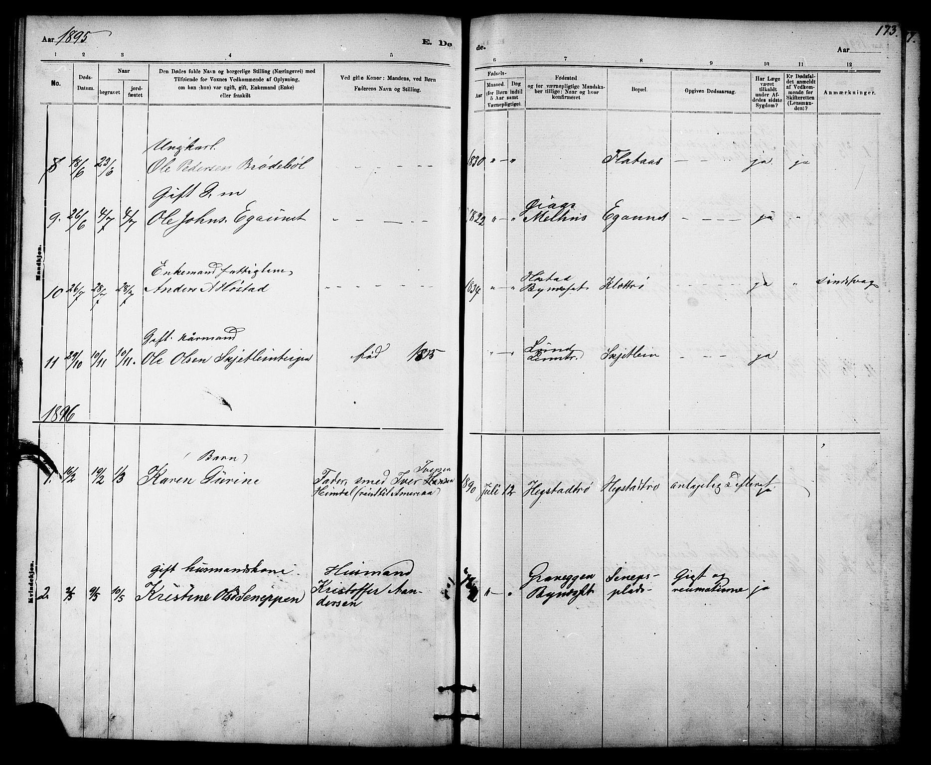 SAT, Ministerialprotokoller, klokkerbøker og fødselsregistre - Sør-Trøndelag, 613/L0395: Klokkerbok nr. 613C03, 1887-1909, s. 173