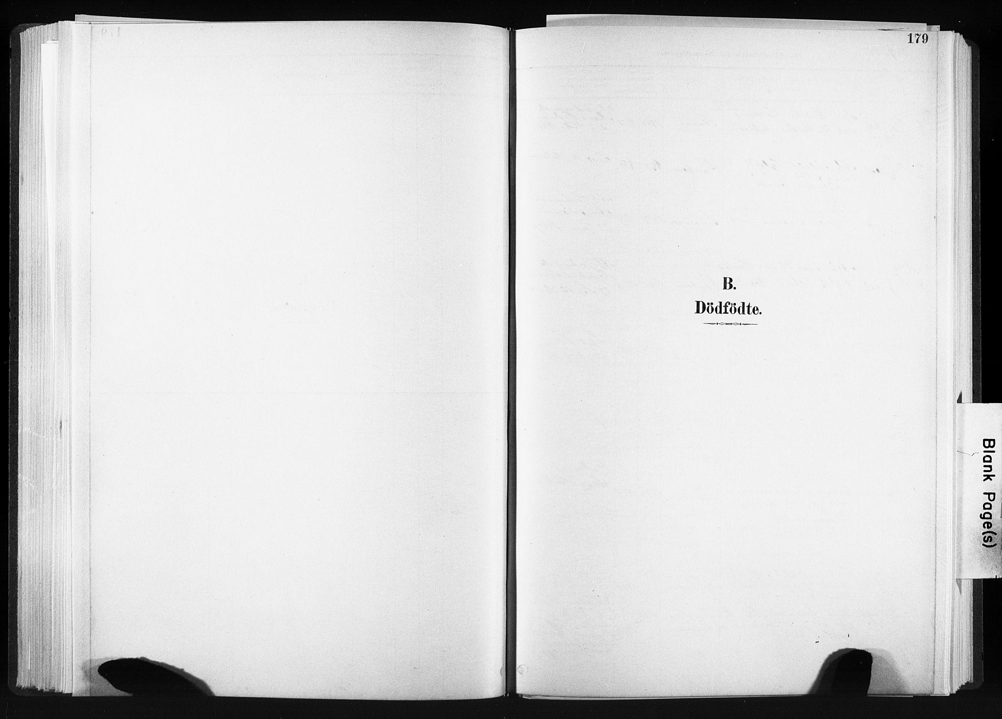 SAT, Ministerialprotokoller, klokkerbøker og fødselsregistre - Sør-Trøndelag, 606/L0300: Ministerialbok nr. 606A15, 1886-1893, s. 179