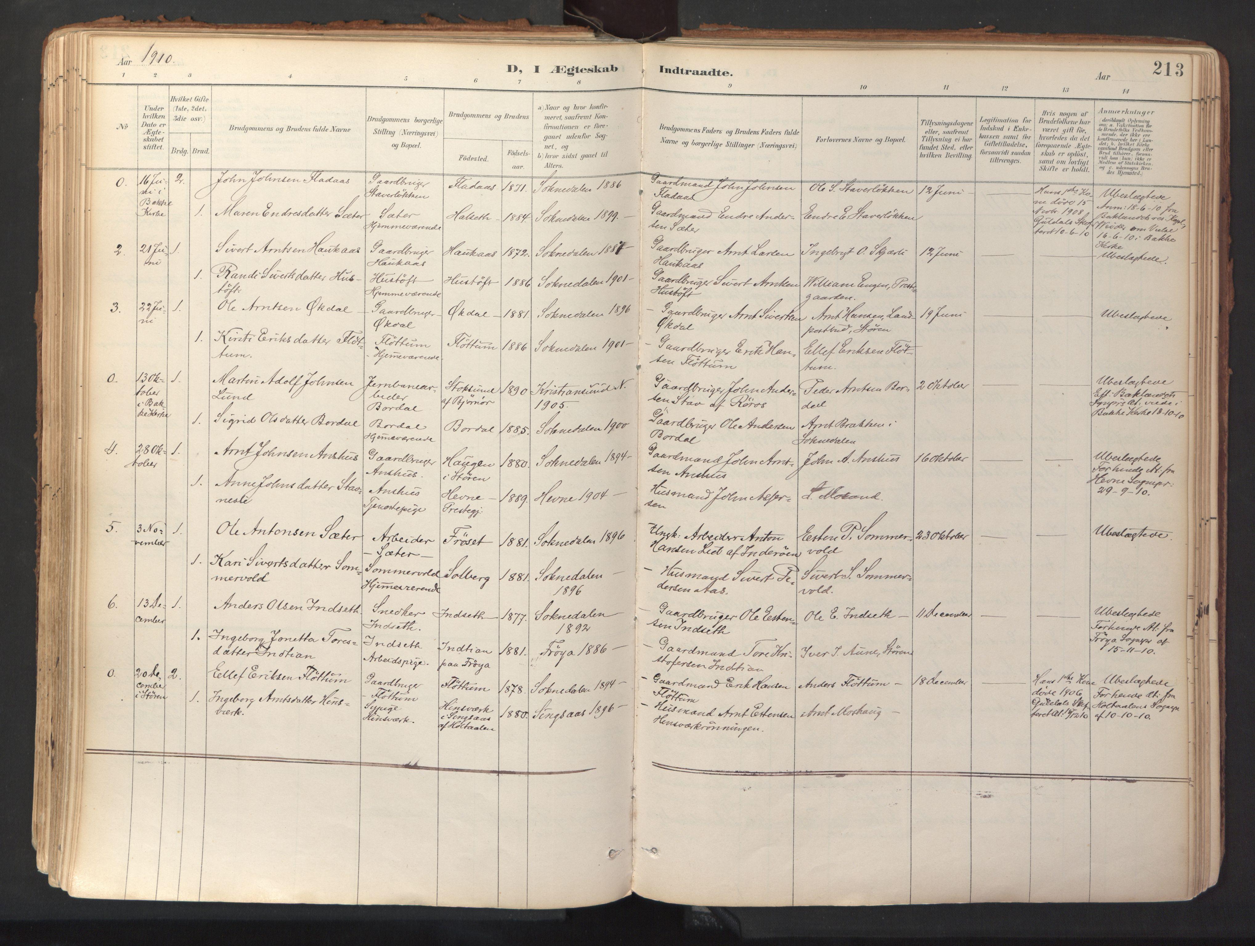SAT, Ministerialprotokoller, klokkerbøker og fødselsregistre - Sør-Trøndelag, 689/L1041: Ministerialbok nr. 689A06, 1891-1923, s. 213