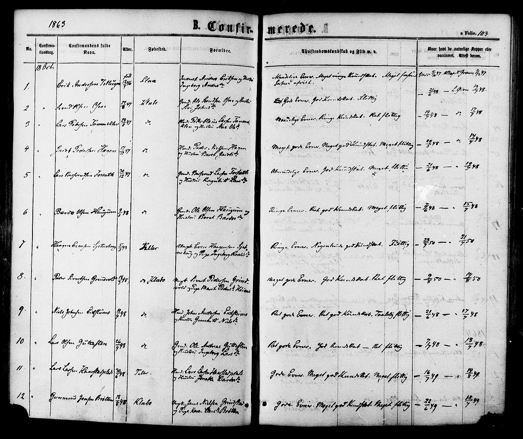 SAT, Ministerialprotokoller, klokkerbøker og fødselsregistre - Sør-Trøndelag, 618/L0442: Ministerialbok nr. 618A06 /1, 1863-1879, s. 103
