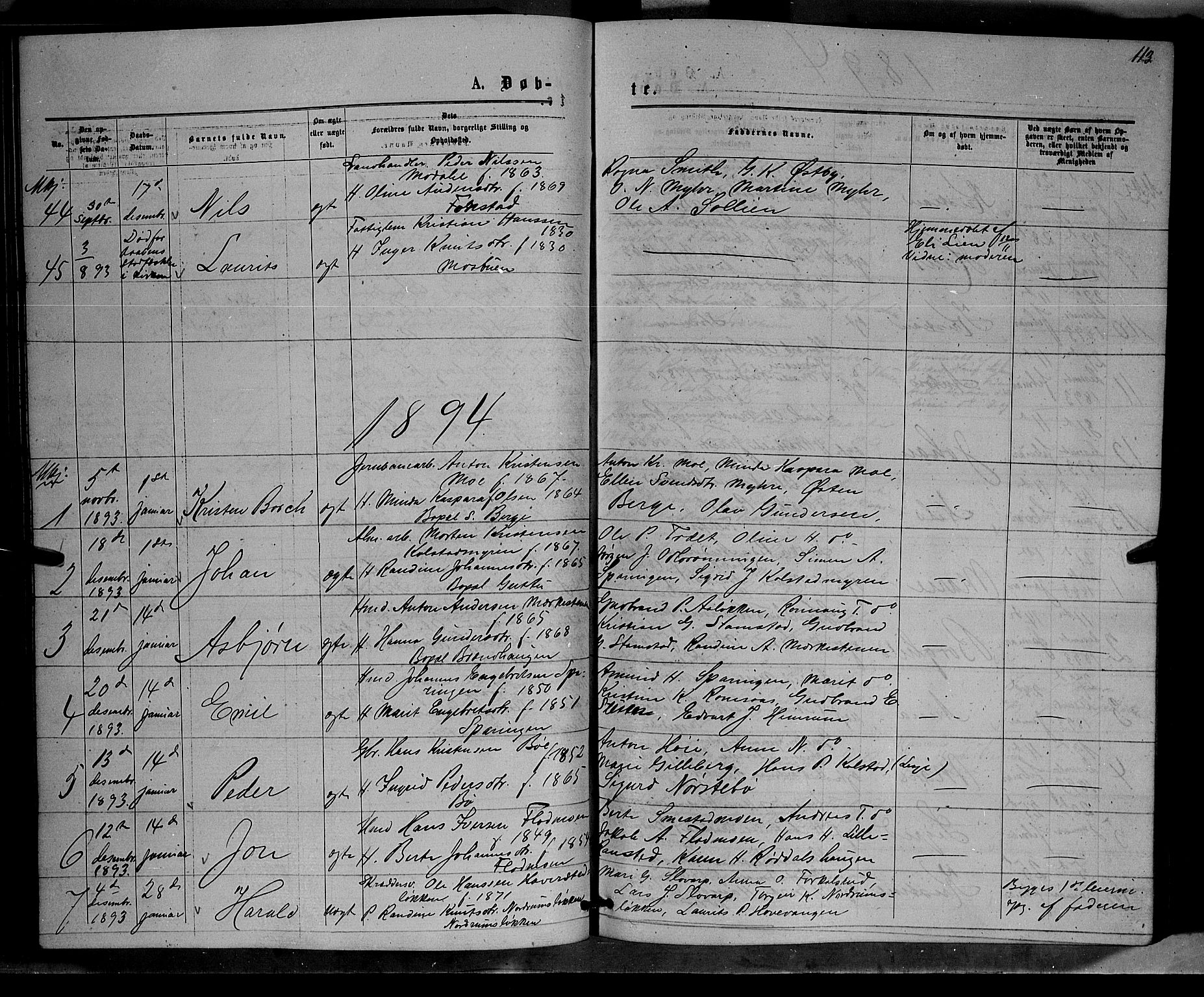 SAH, Ringebu prestekontor, Klokkerbok nr. 6, 1880-1898, s. 113