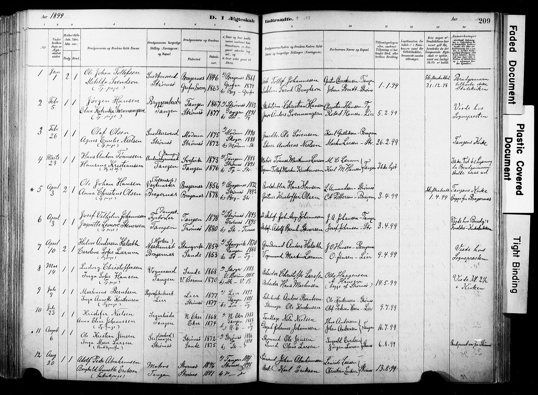 SAKO, Strømsø kirkebøker, F/Fb/L0006: Ministerialbok nr. II 6, 1879-1910, s. 209