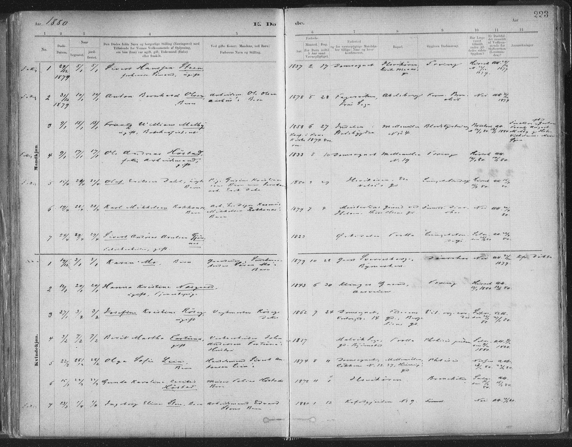 SAT, Ministerialprotokoller, klokkerbøker og fødselsregistre - Sør-Trøndelag, 603/L0162: Ministerialbok nr. 603A01, 1879-1895, s. 223