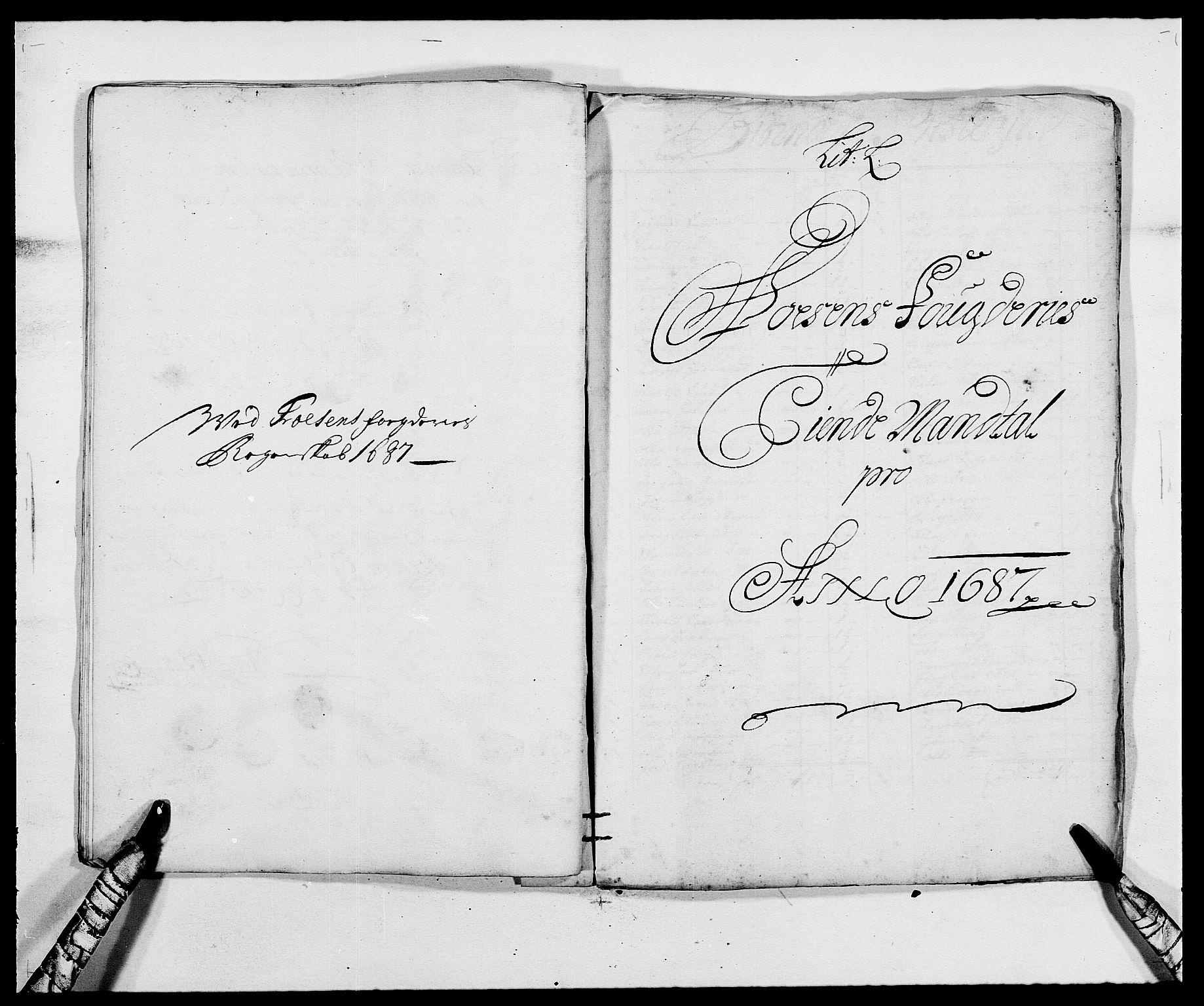 RA, Rentekammeret inntil 1814, Reviderte regnskaper, Fogderegnskap, R57/L3845: Fogderegnskap Fosen, 1687, s. 117