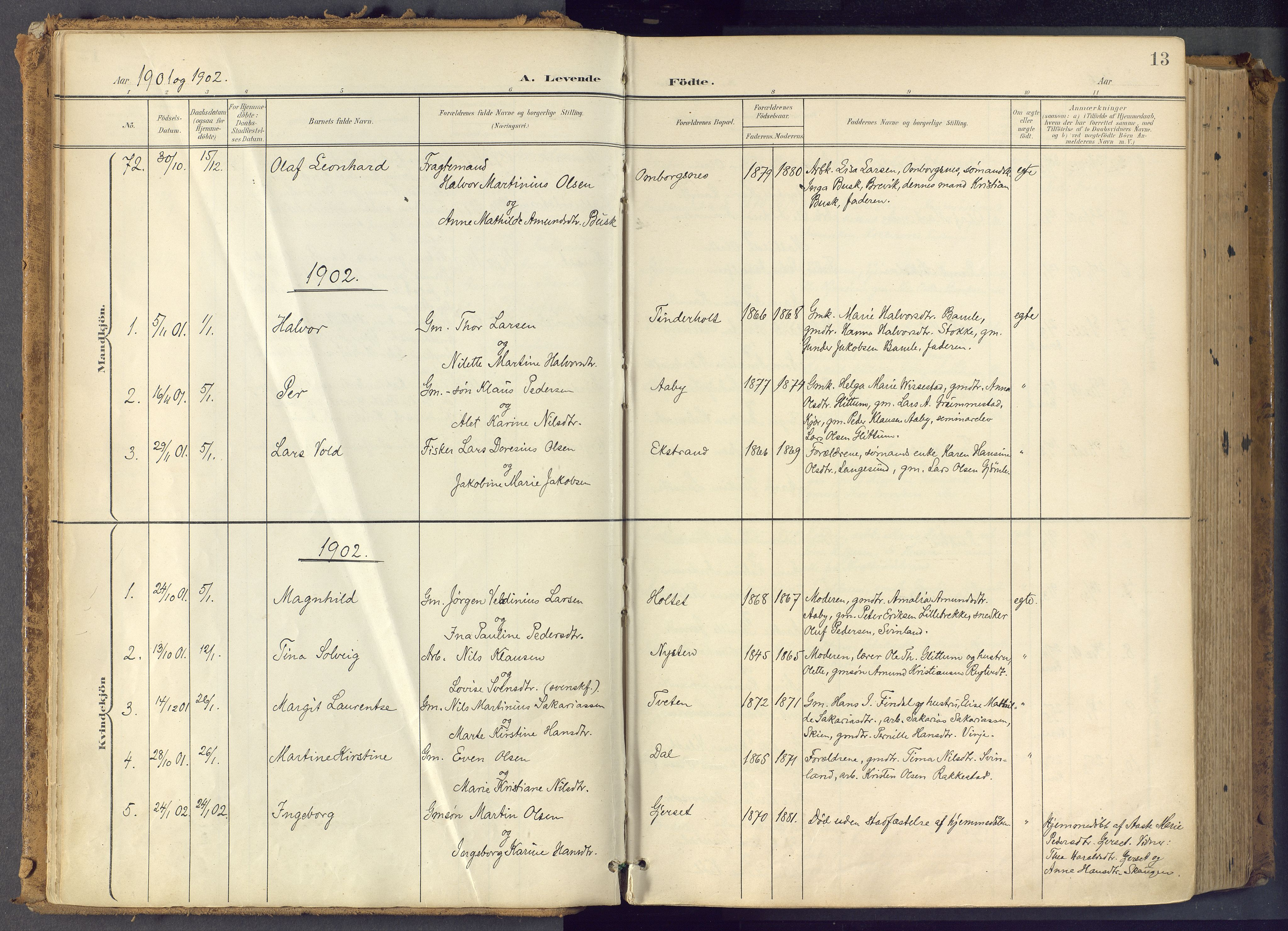 SAKO, Bamble kirkebøker, F/Fa/L0009: Ministerialbok nr. I 9, 1901-1917, s. 13