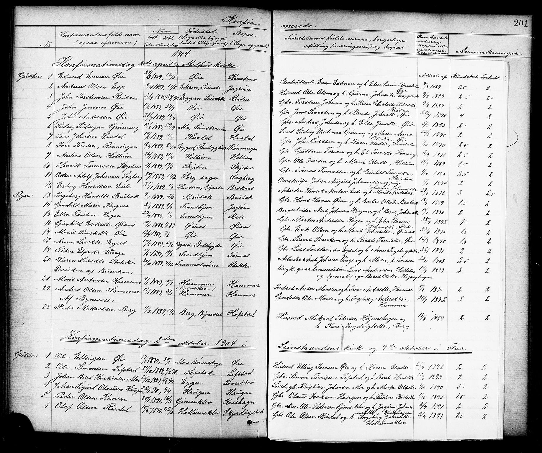 SAT, Ministerialprotokoller, klokkerbøker og fødselsregistre - Sør-Trøndelag, 691/L1094: Klokkerbok nr. 691C05, 1879-1911, s. 201a