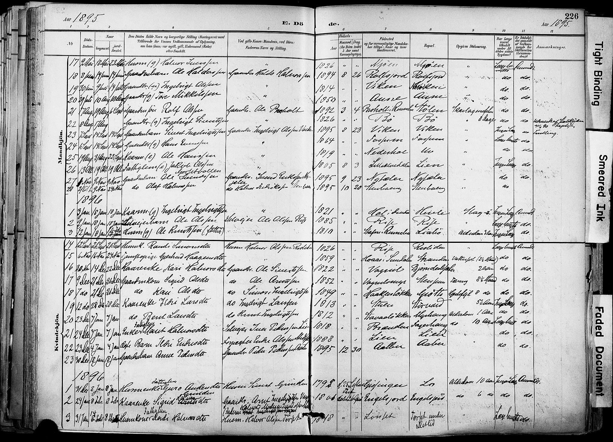 SAT, Ministerialprotokoller, klokkerbøker og fødselsregistre - Sør-Trøndelag, 678/L0902: Ministerialbok nr. 678A11, 1895-1911, s. 226