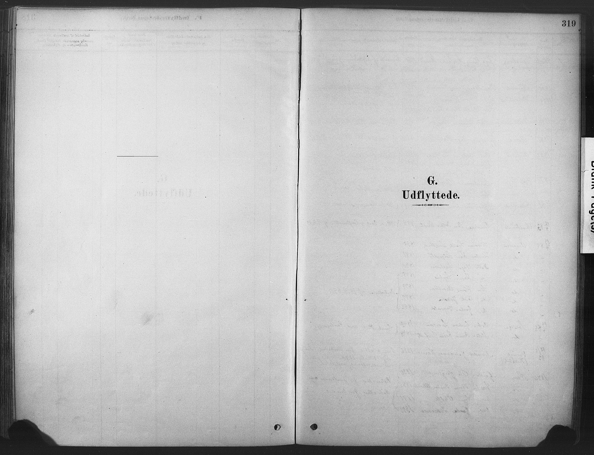 SAKO, Våle kirkebøker, F/Fa/L0011: Ministerialbok nr. I 11, 1878-1906, s. 319