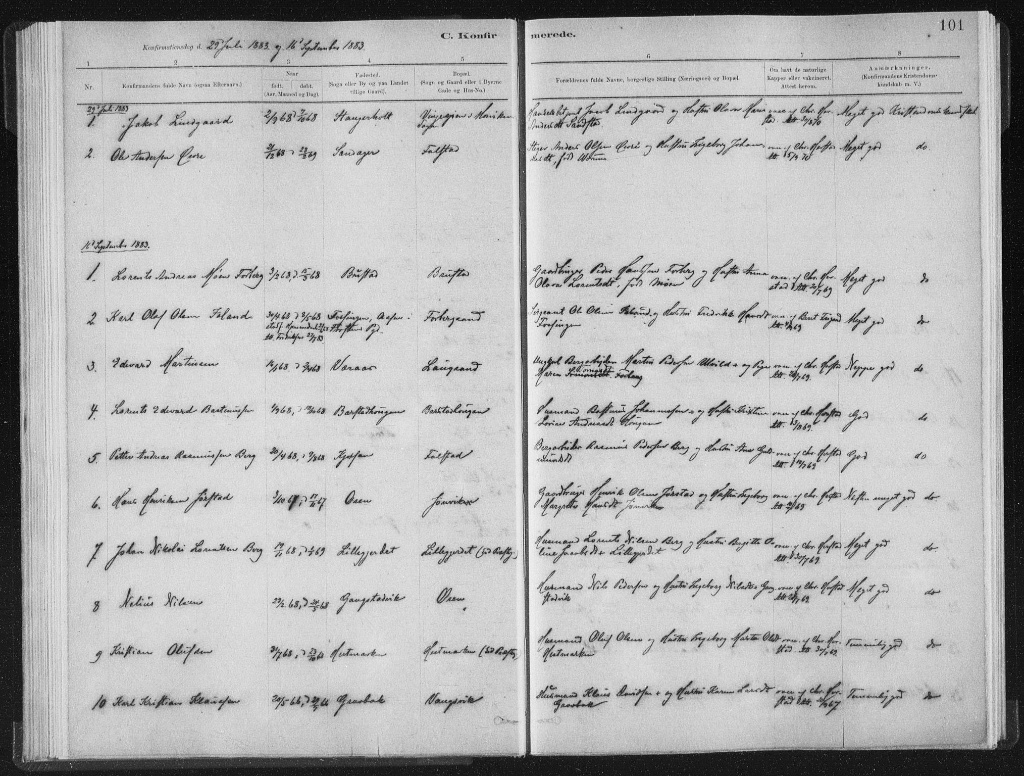 SAT, Ministerialprotokoller, klokkerbøker og fødselsregistre - Nord-Trøndelag, 722/L0220: Ministerialbok nr. 722A07, 1881-1908, s. 101
