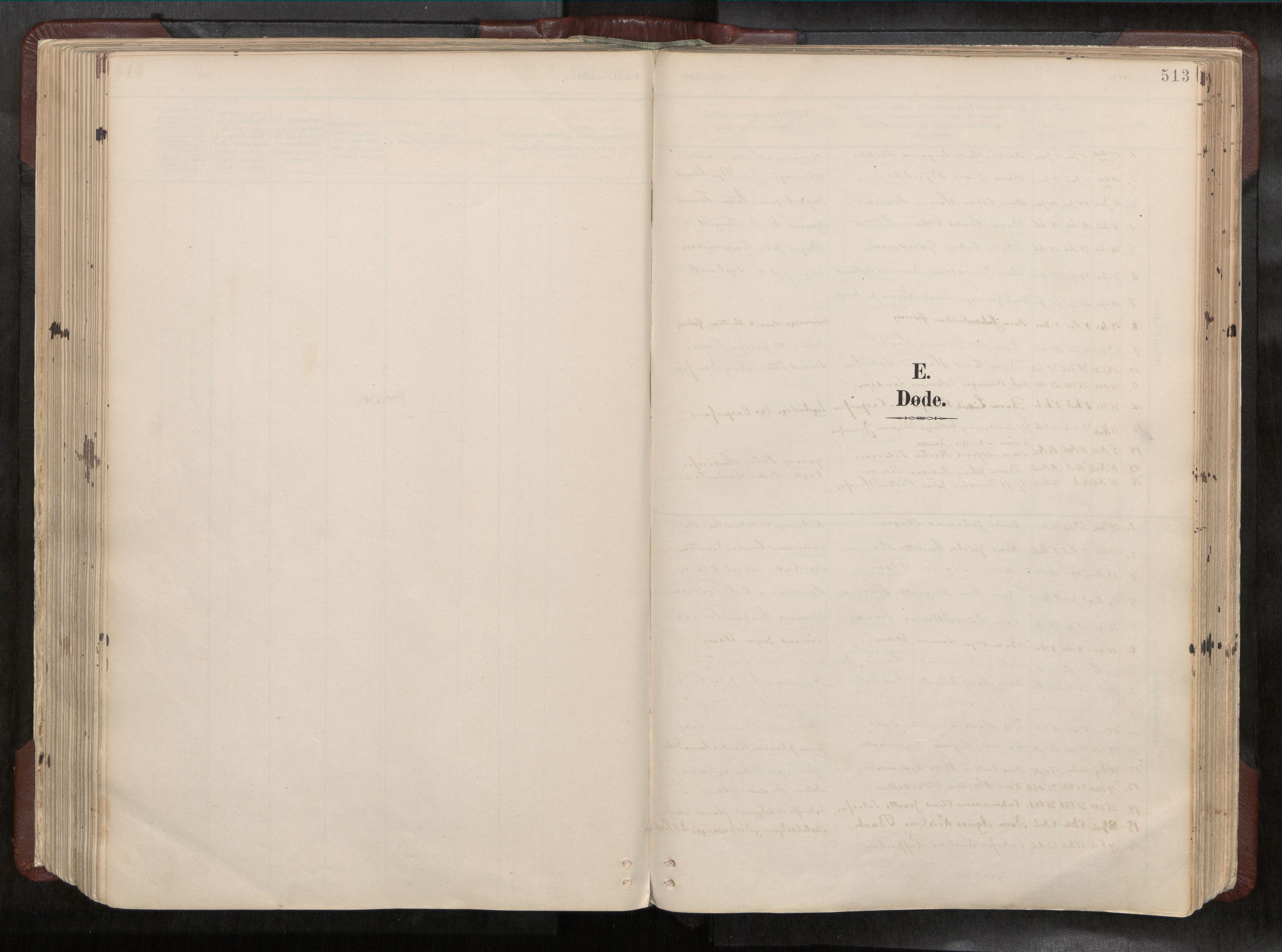 SAT, Ministerialprotokoller, klokkerbøker og fødselsregistre - Nord-Trøndelag, 768/L0579a: Ministerialbok nr. 768A14, 1887-1931, s. 513
