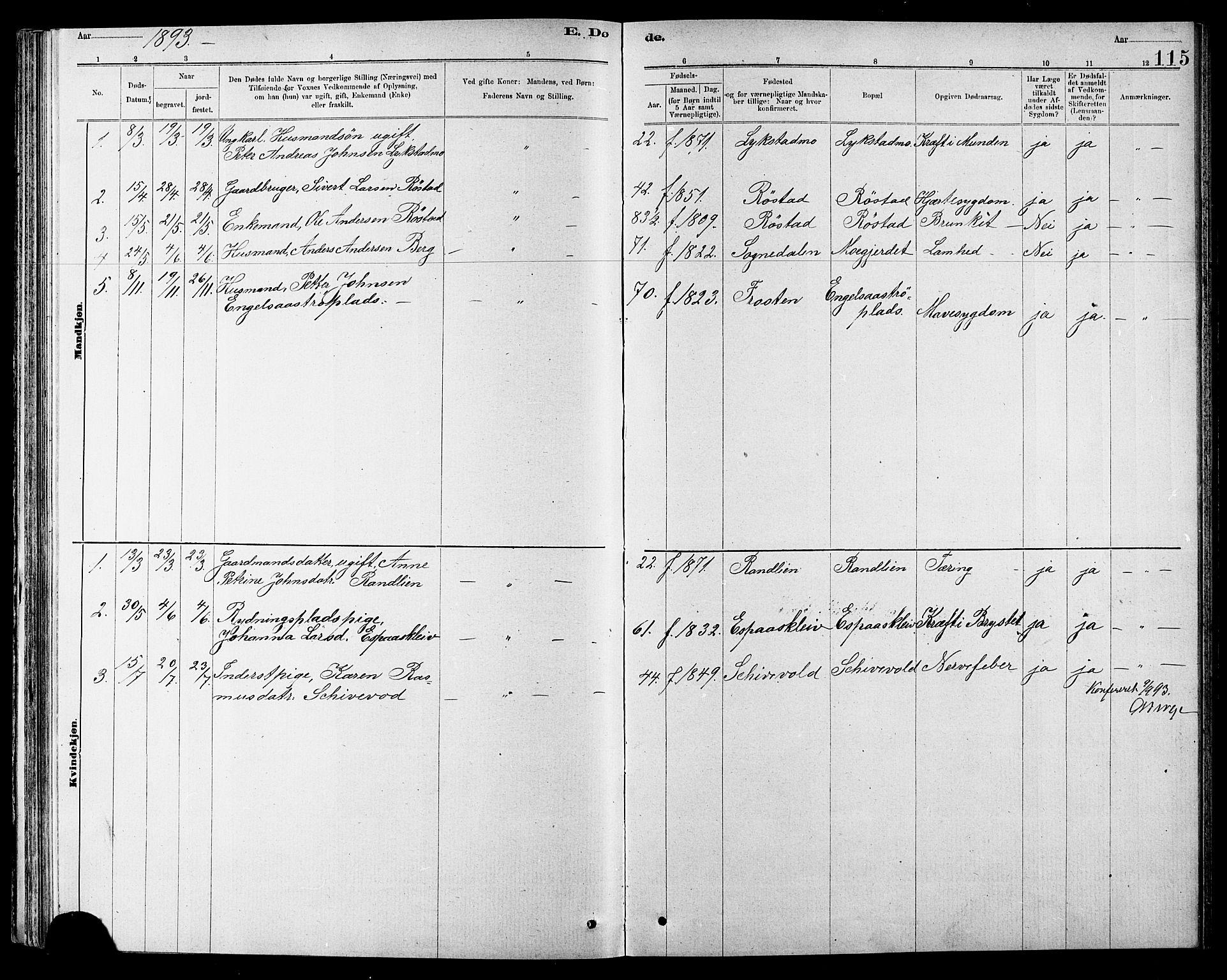 SAT, Ministerialprotokoller, klokkerbøker og fødselsregistre - Sør-Trøndelag, 608/L0341: Klokkerbok nr. 608C07, 1890-1912, s. 115
