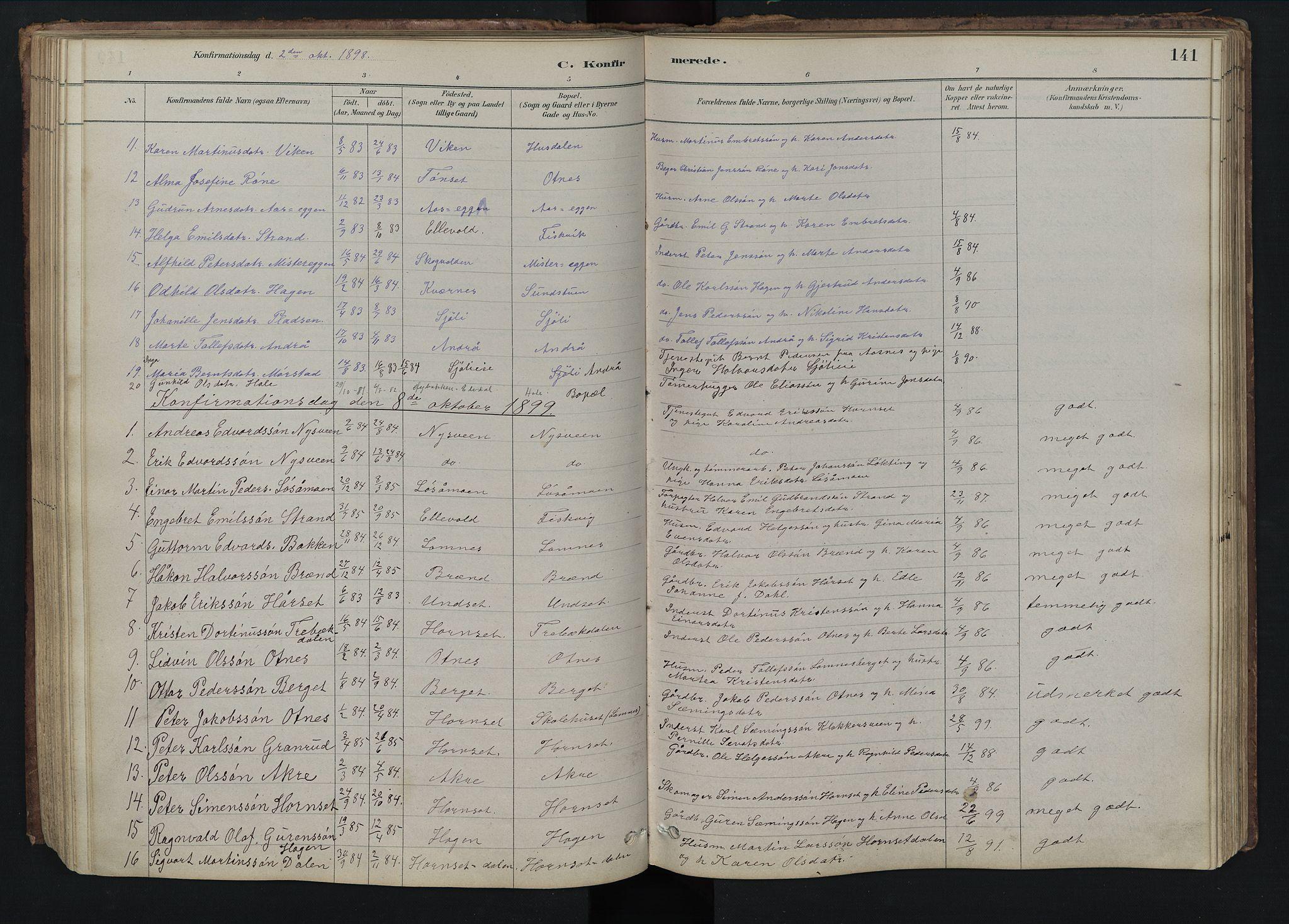 SAH, Rendalen prestekontor, H/Ha/Hab/L0009: Klokkerbok nr. 9, 1879-1902, s. 141