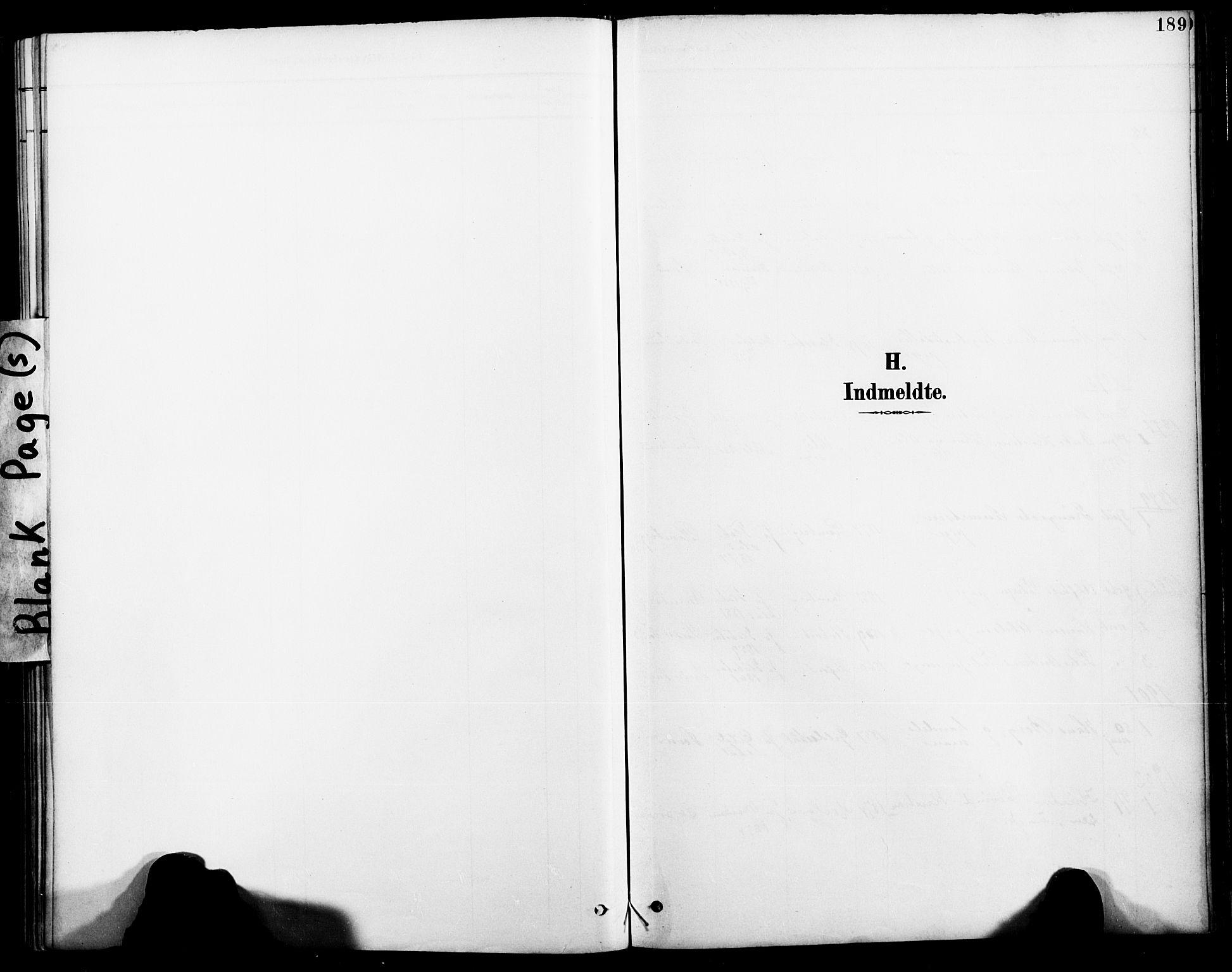SAT, Ministerialprotokoller, klokkerbøker og fødselsregistre - Nordland, 885/L1205: Ministerialbok nr. 885A06, 1892-1905, s. 189