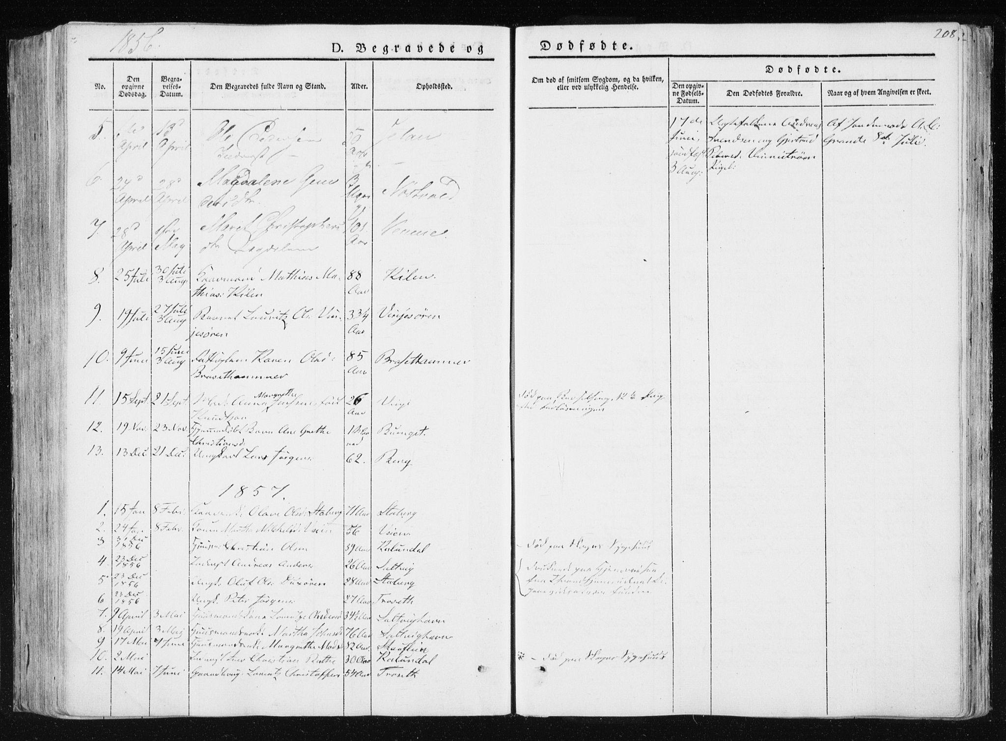 SAT, Ministerialprotokoller, klokkerbøker og fødselsregistre - Nord-Trøndelag, 733/L0323: Ministerialbok nr. 733A02, 1843-1870, s. 208