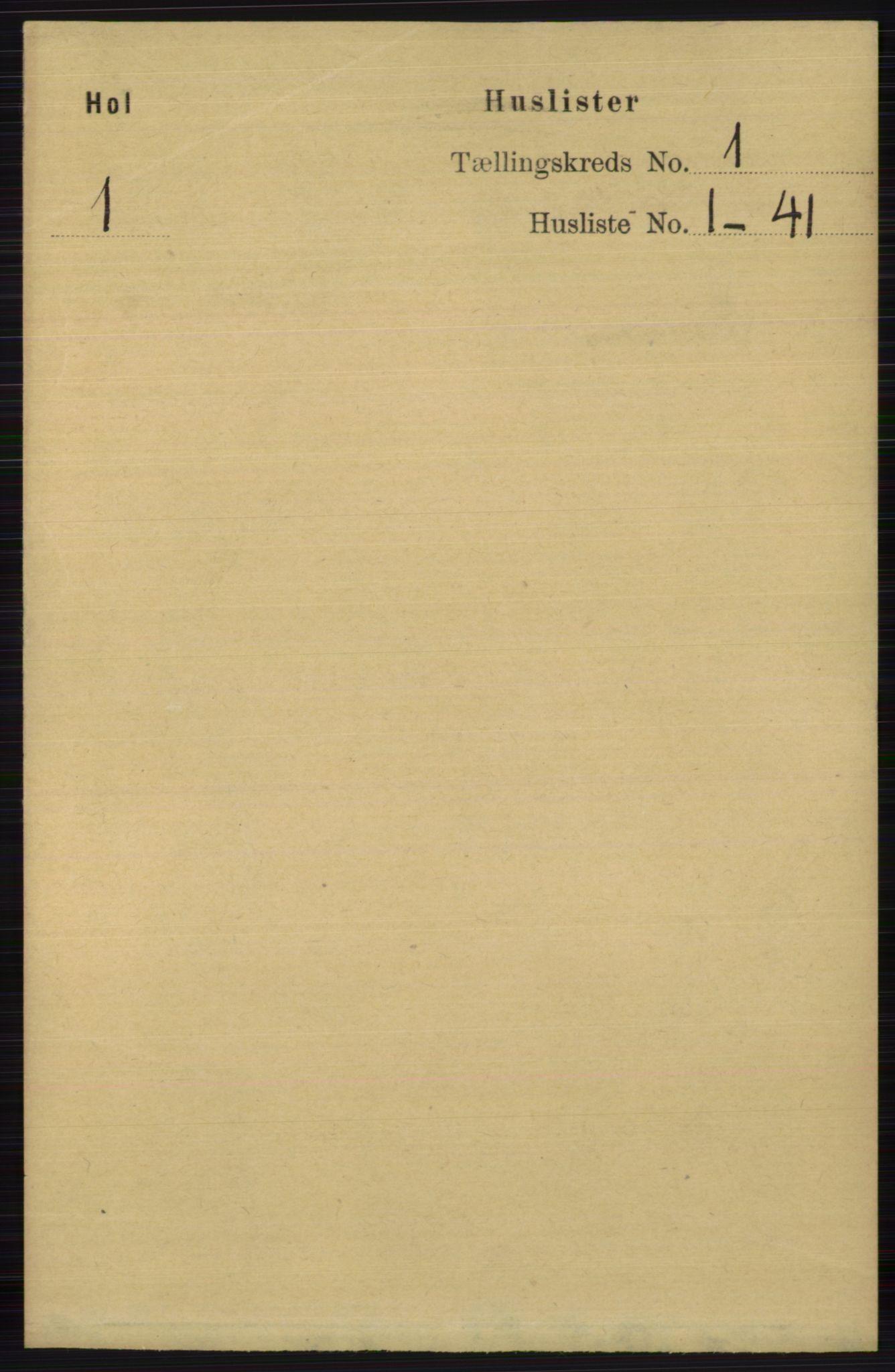 RA, Folketelling 1891 for 0620 Hol herred, 1891, s. 25
