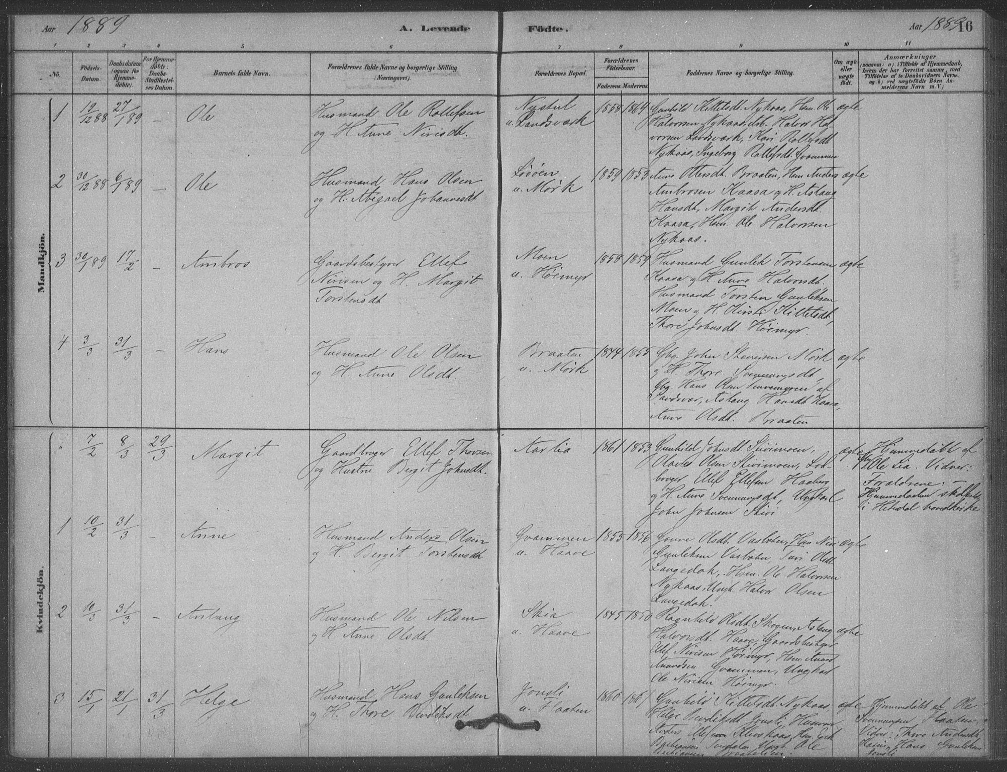 SAKO, Heddal kirkebøker, F/Fb/L0002: Ministerialbok nr. II 2, 1878-1913, s. 16