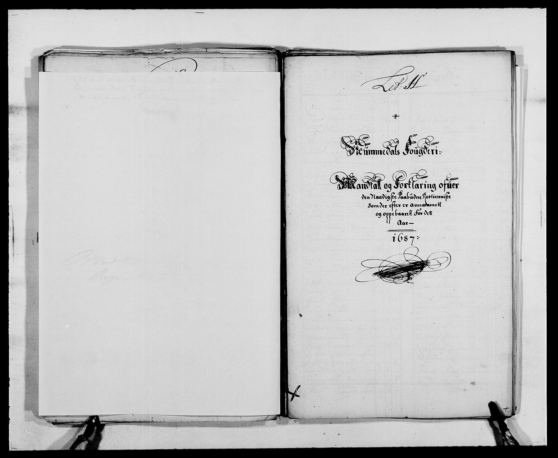 RA, Rentekammeret inntil 1814, Reviderte regnskaper, Fogderegnskap, R64/L4422: Fogderegnskap Namdal, 1687-1689, s. 40