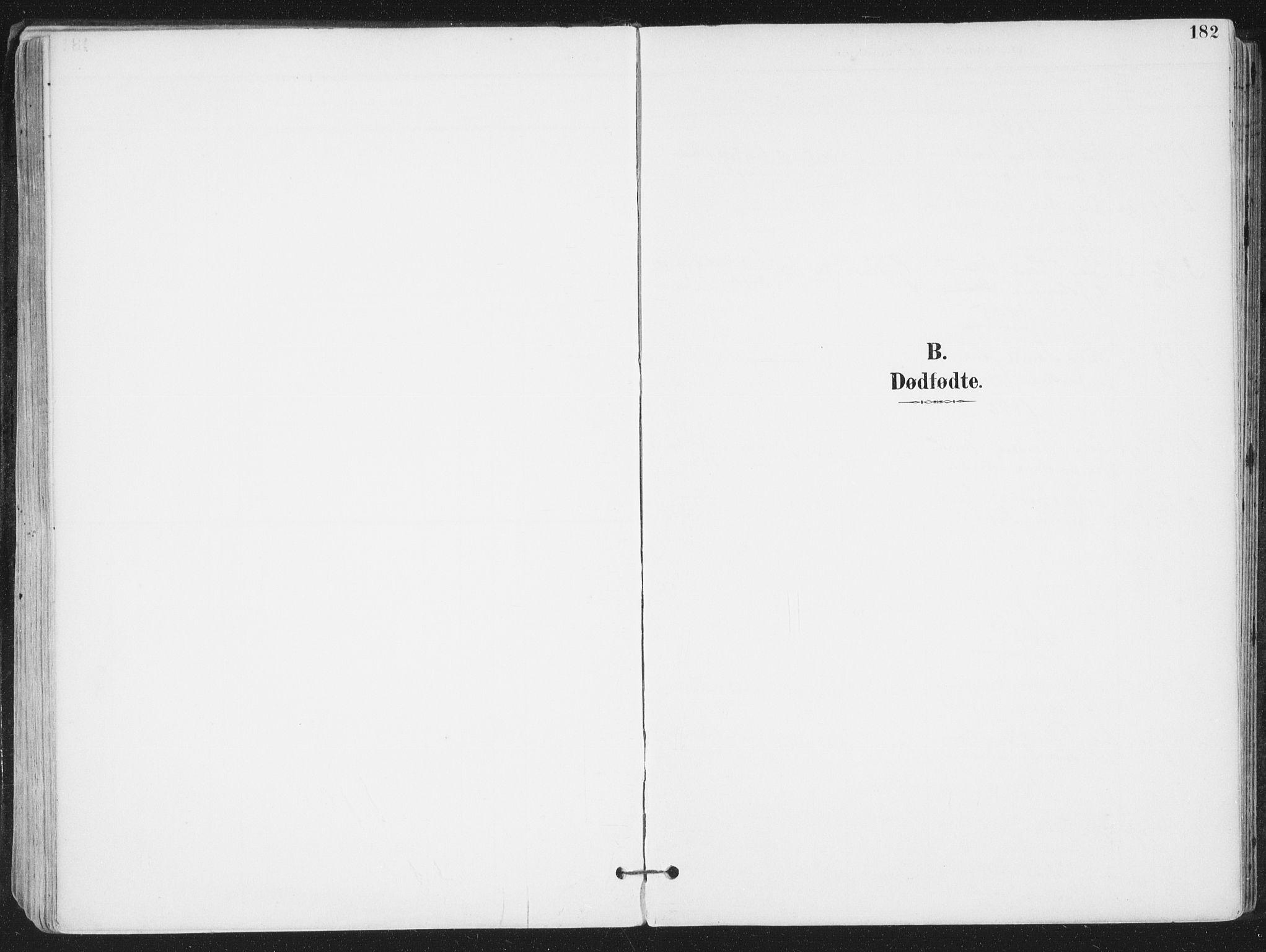 SAT, Ministerialprotokoller, klokkerbøker og fødselsregistre - Nordland, 802/L0055: Ministerialbok nr. 802A02, 1894-1915, s. 182